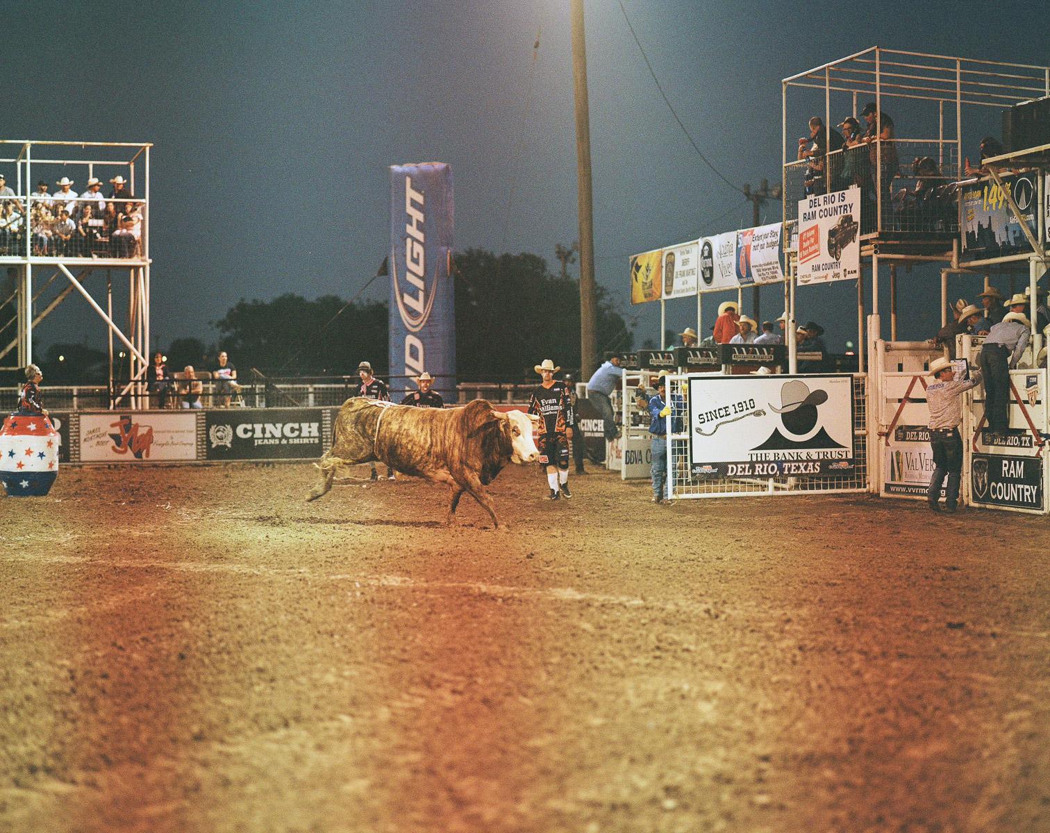 galindo-rodeo-022.jpg