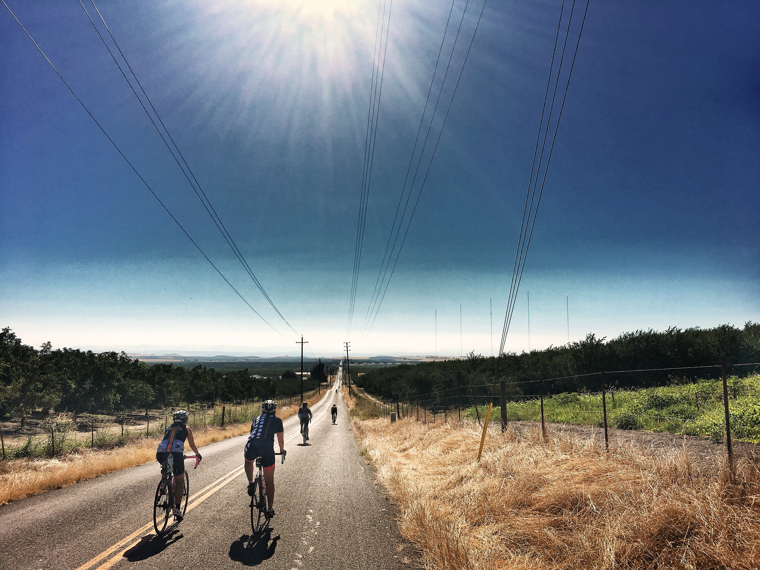 Scenes from a Bike - 11 of 37.jpg