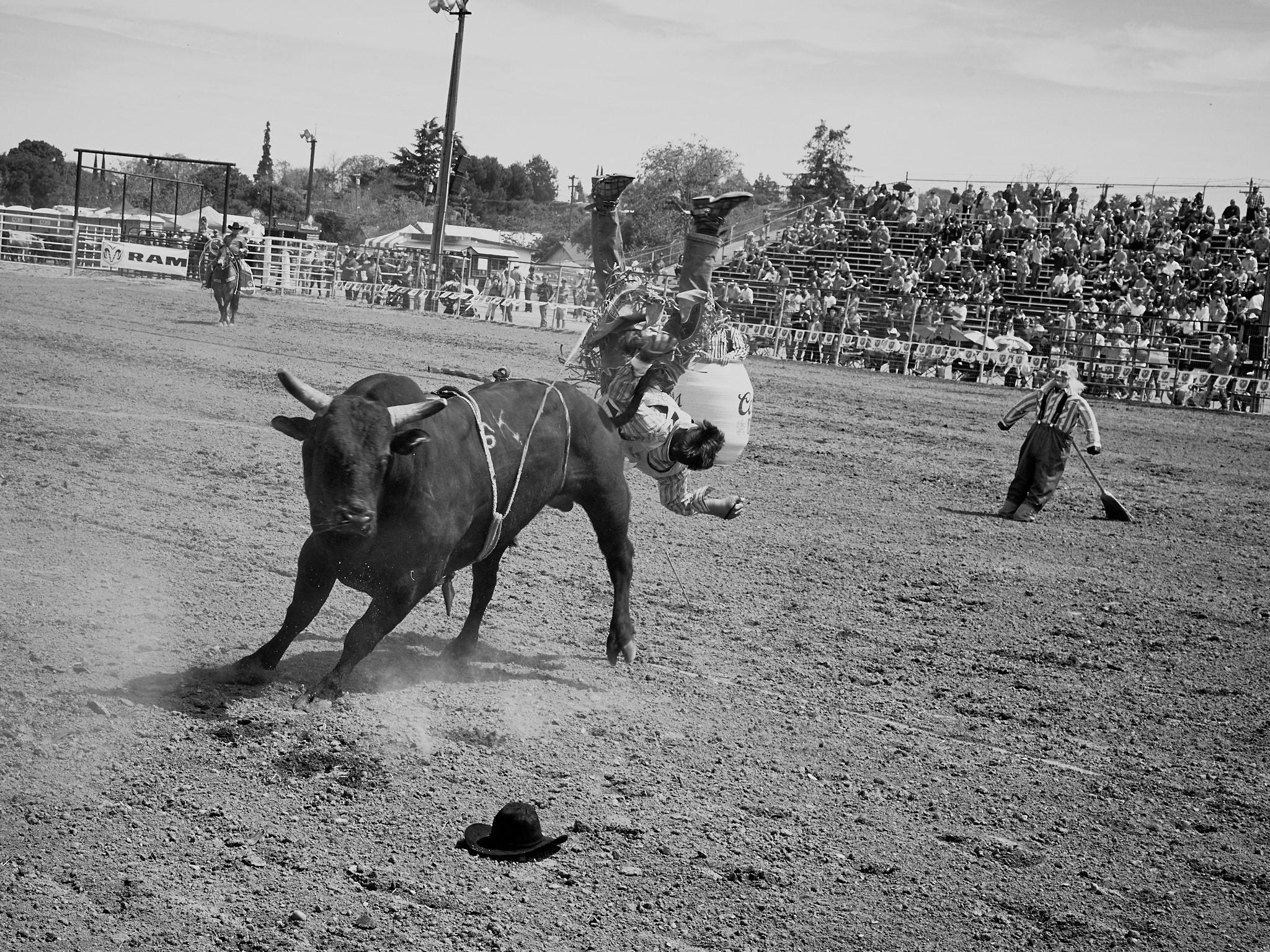 Rodeo_2019_196.jpg