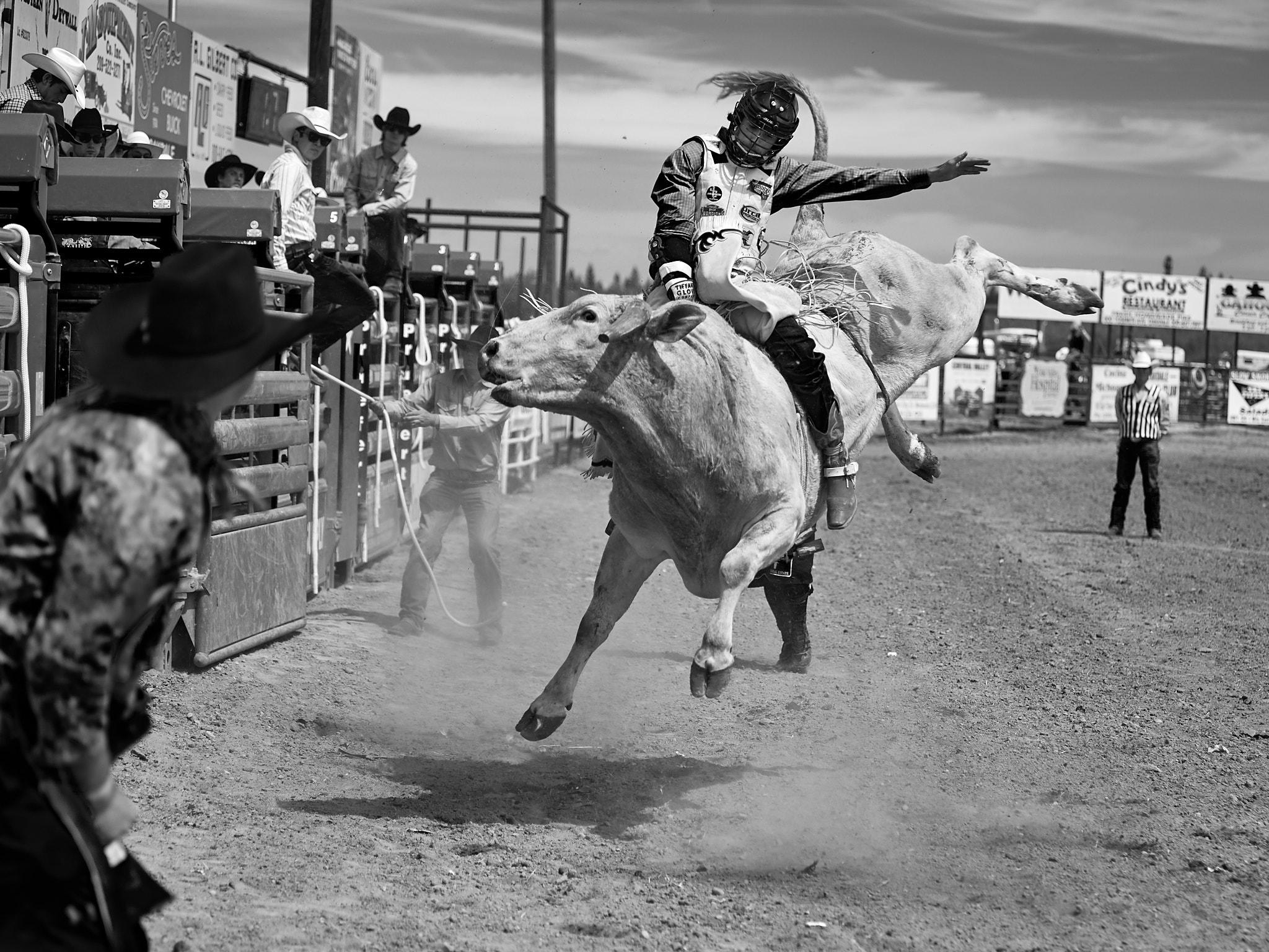 Rodeo_2019_244.jpg