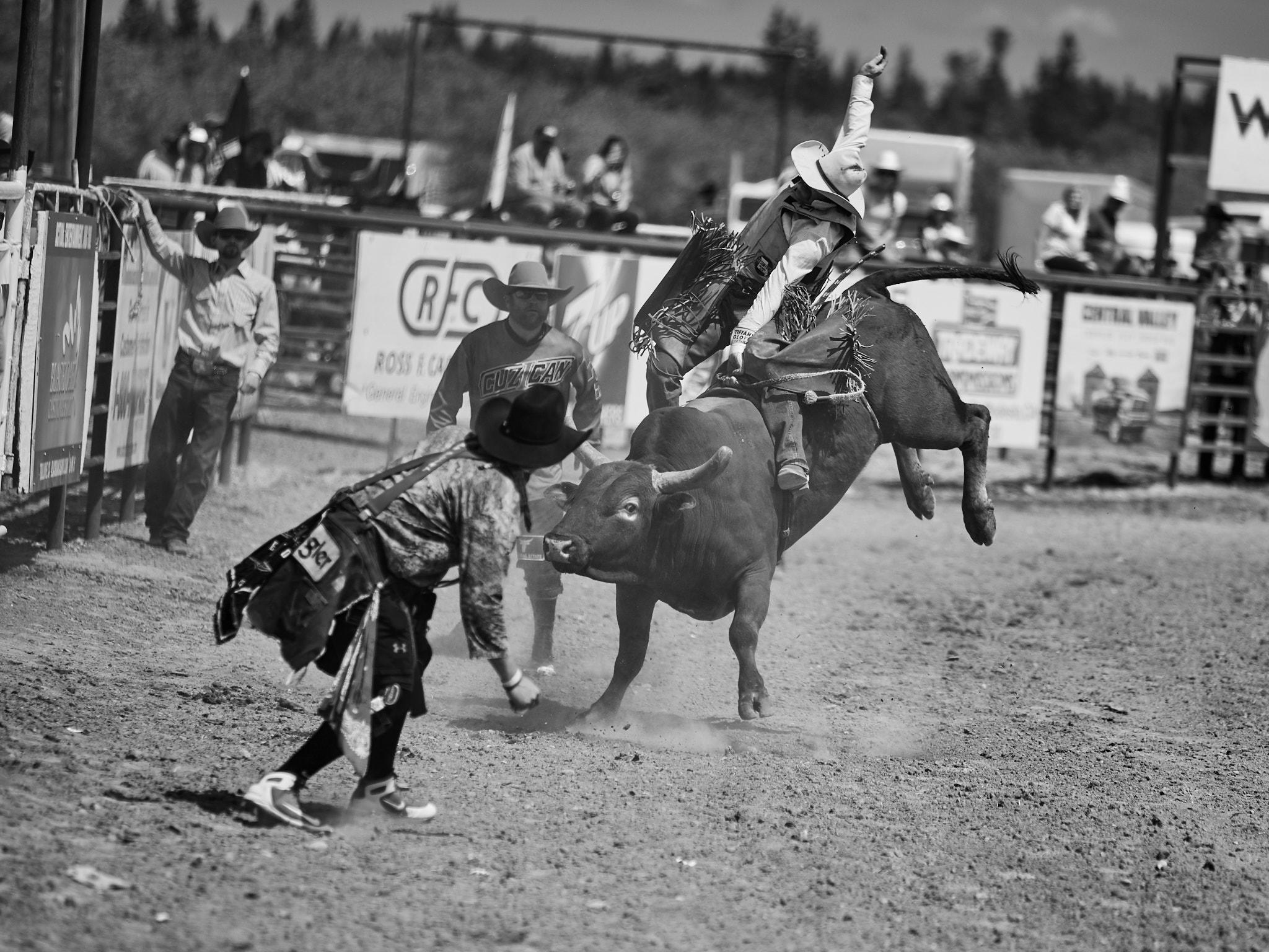 Rodeo_2019_265.jpg