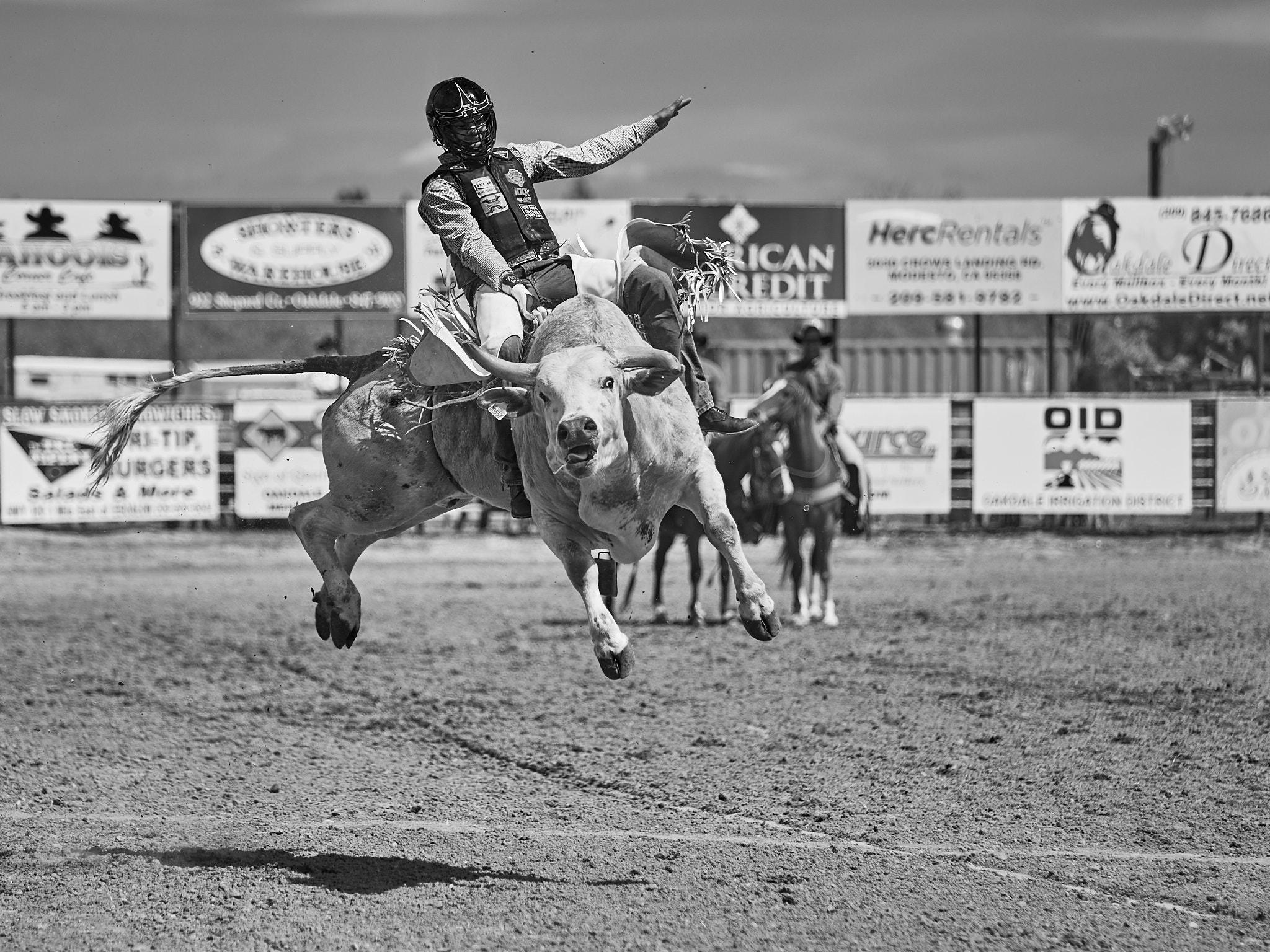 Rodeo_2019_292.jpg
