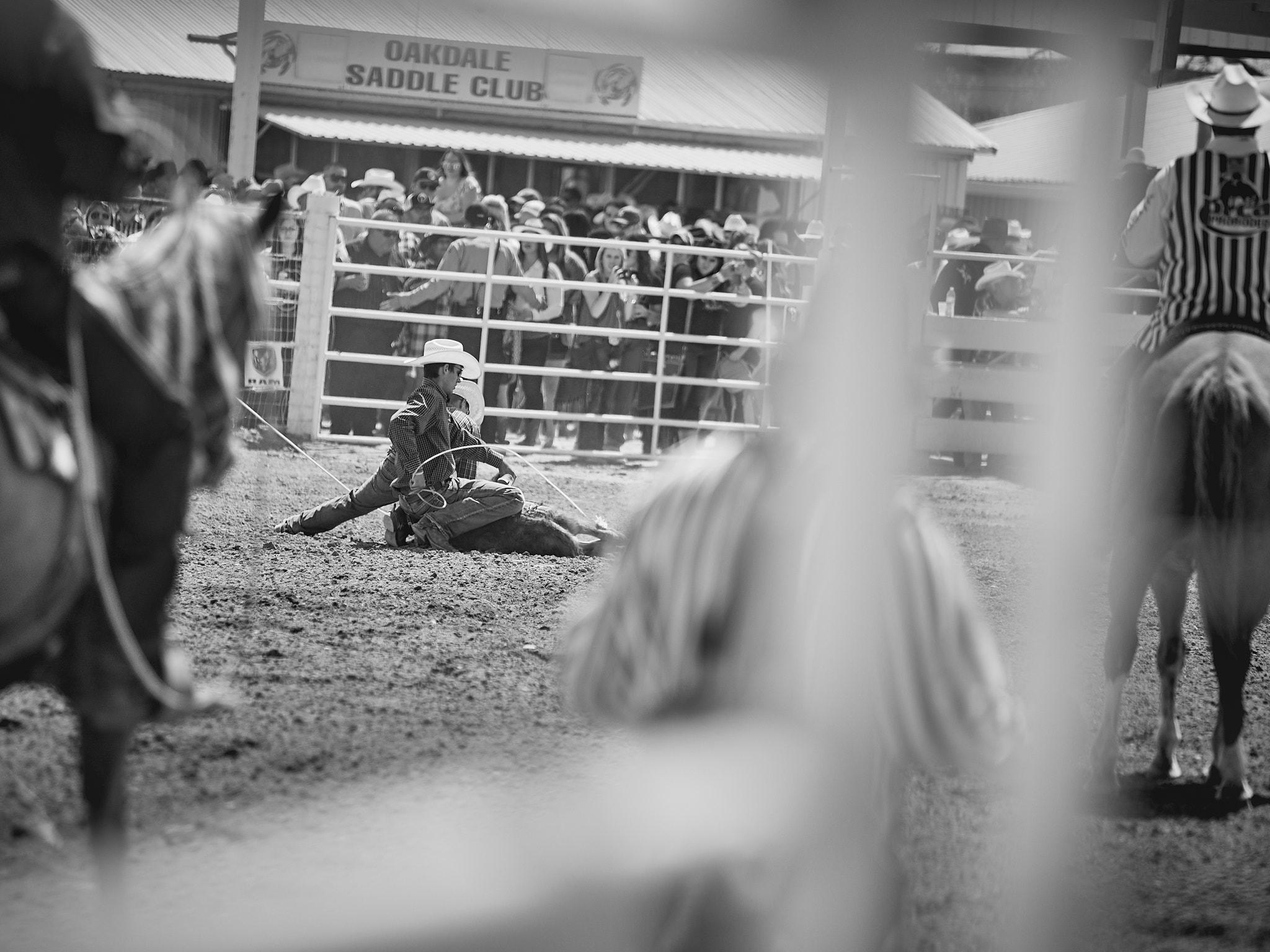 Rodeo_2019_489.jpg