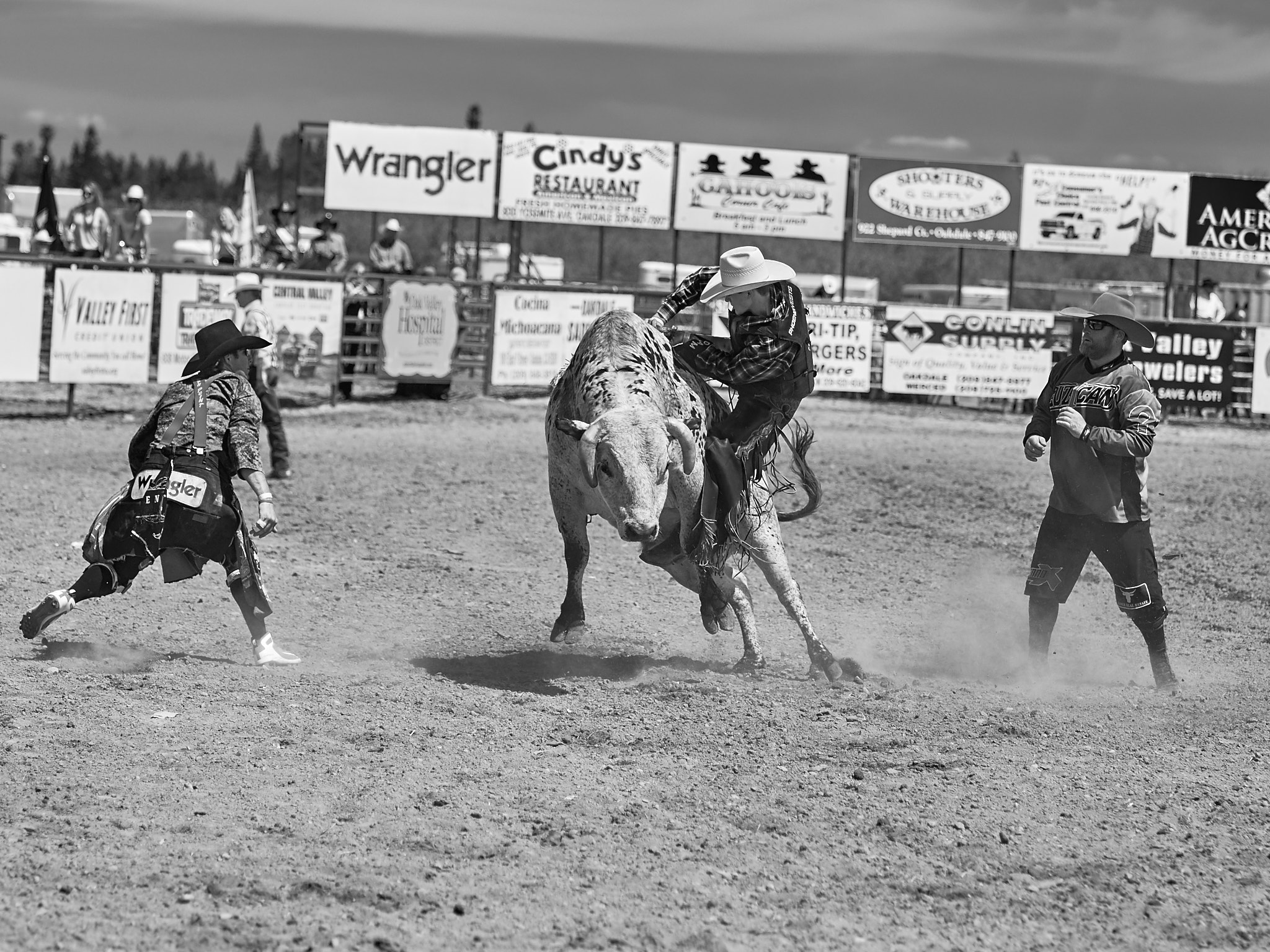 Rodeo_2019_444.jpg