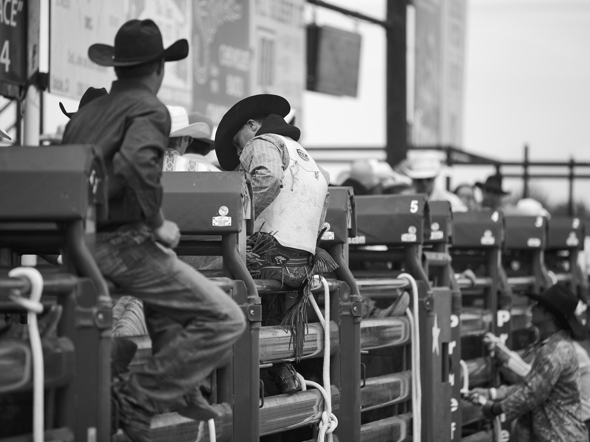 Rodeo_2019_583.jpg