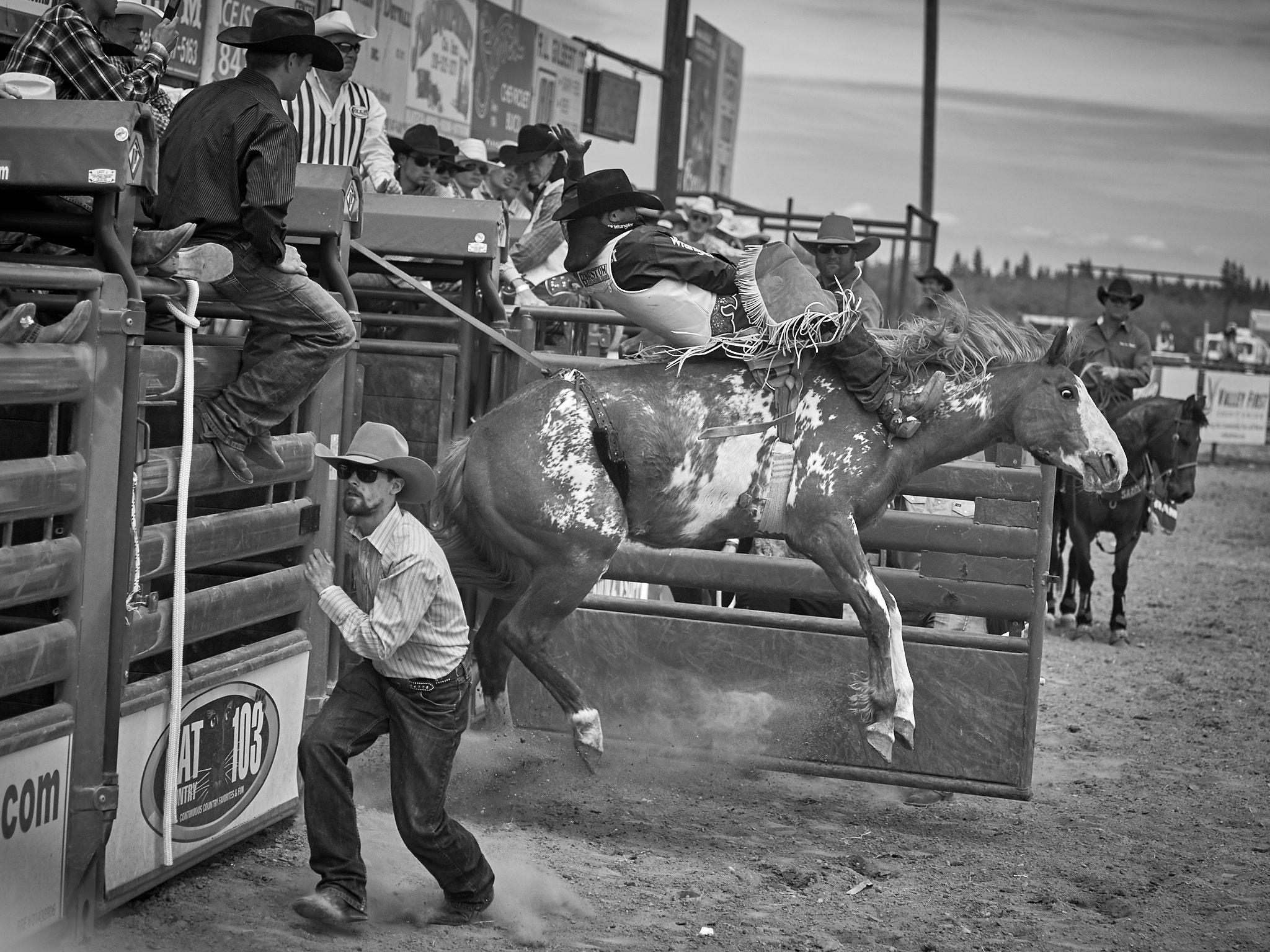 Rodeo_2019_619.jpg