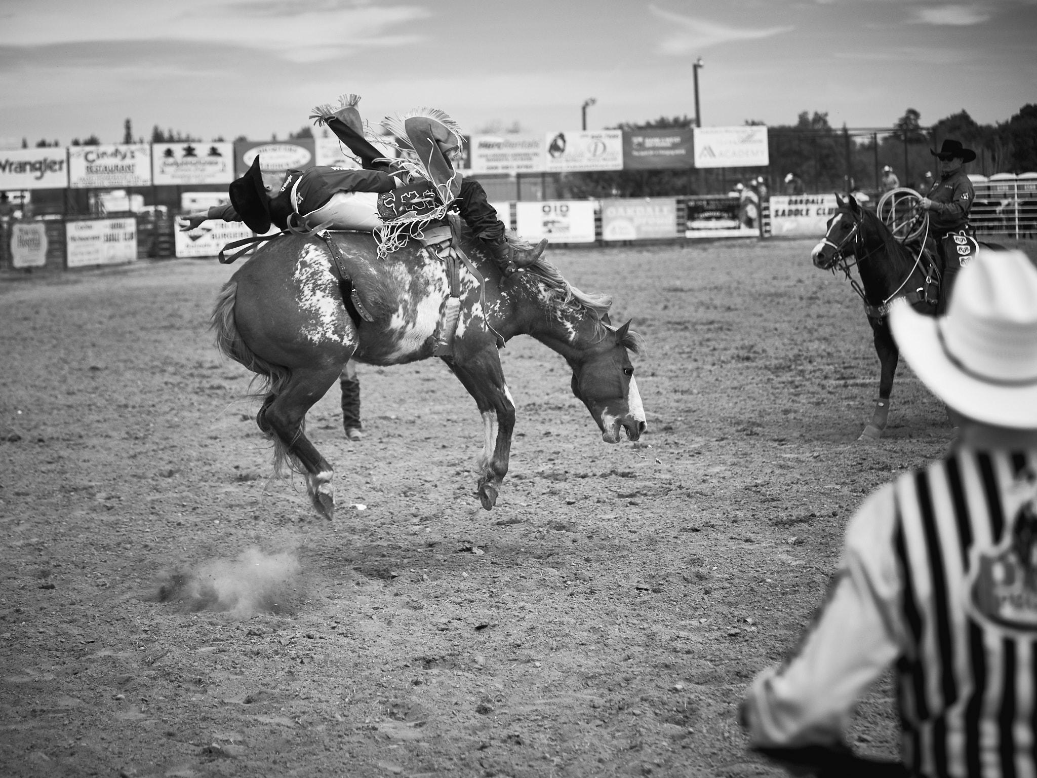 Rodeo_2019_623.jpg