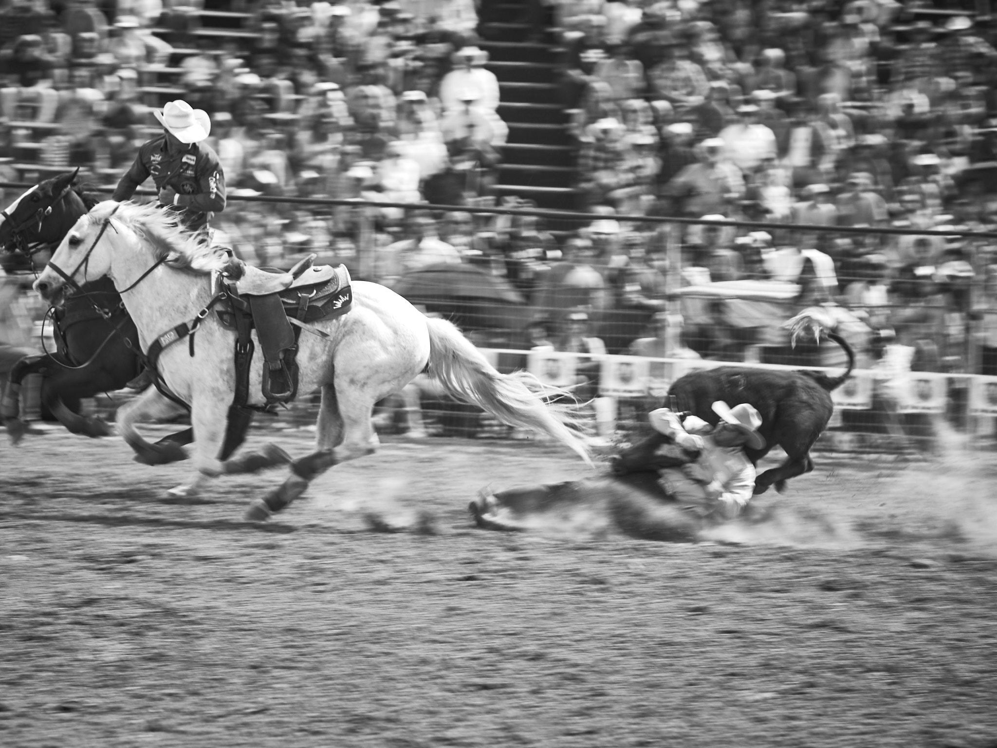 Rodeo_2019_707.jpg