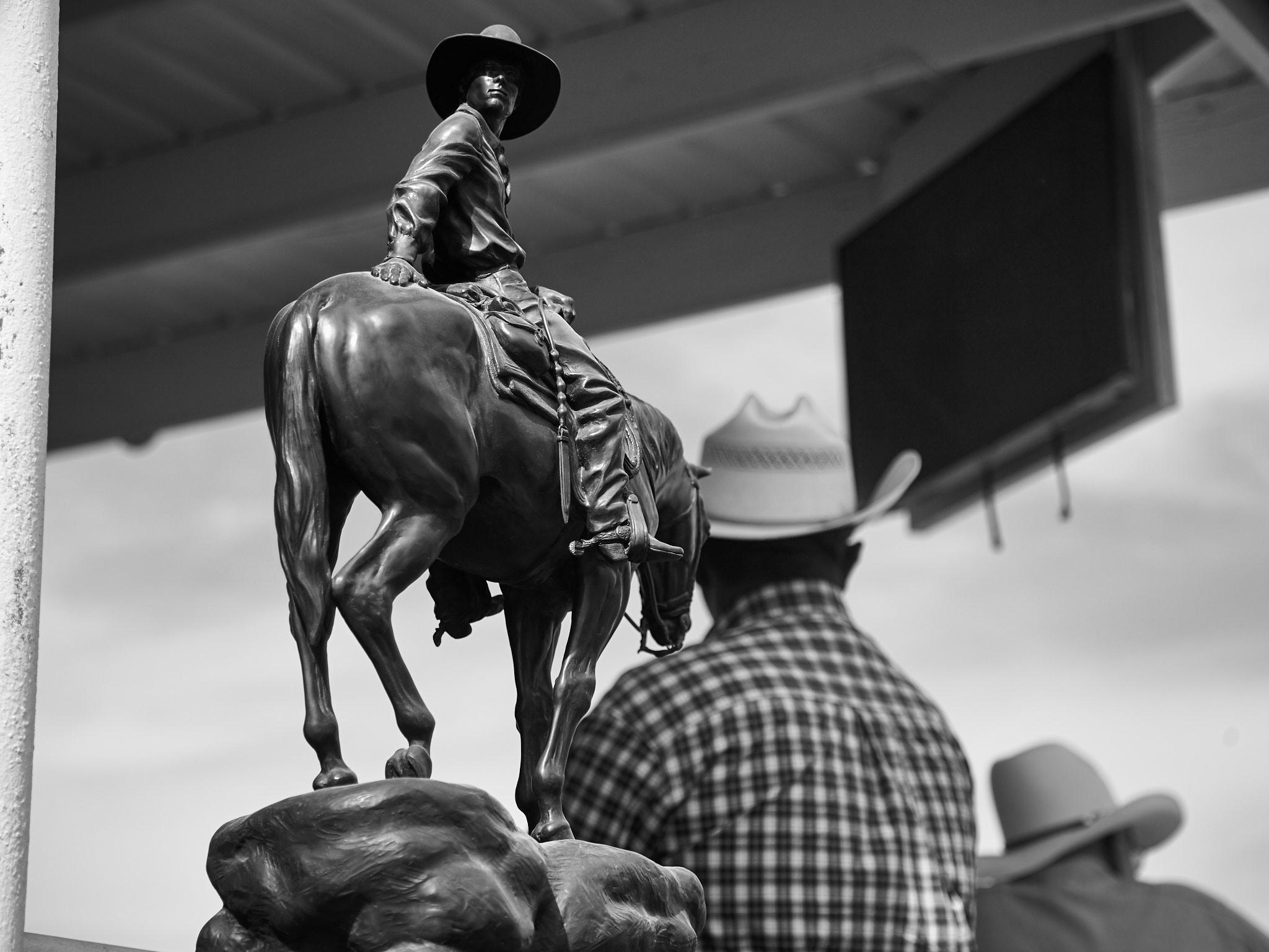 Rodeo_2019_955.jpg