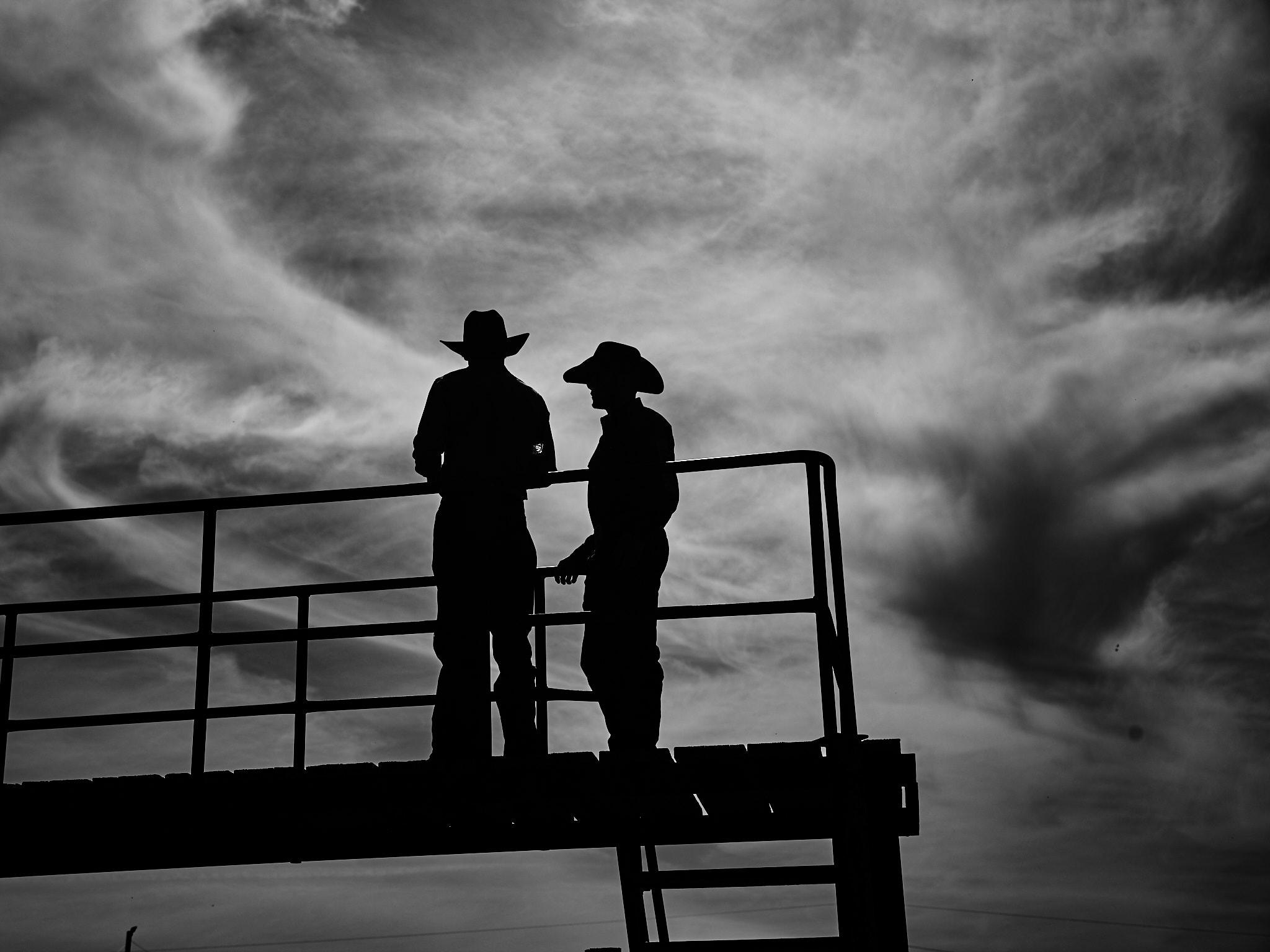 Rodeo_2019_984.jpg