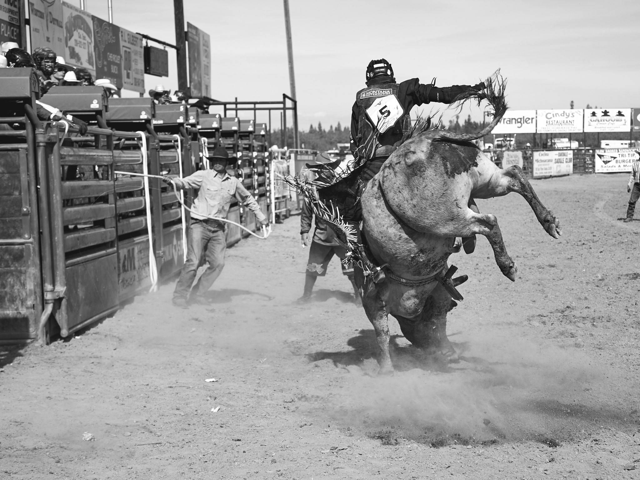 Rodeo_2019_1148.jpg