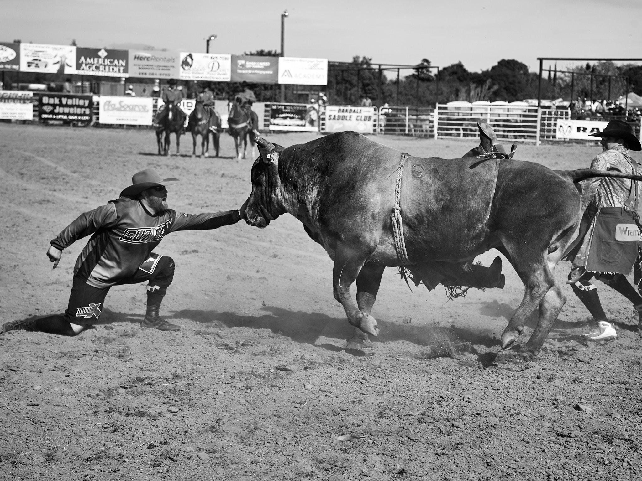 Rodeo_2019_1184.jpg