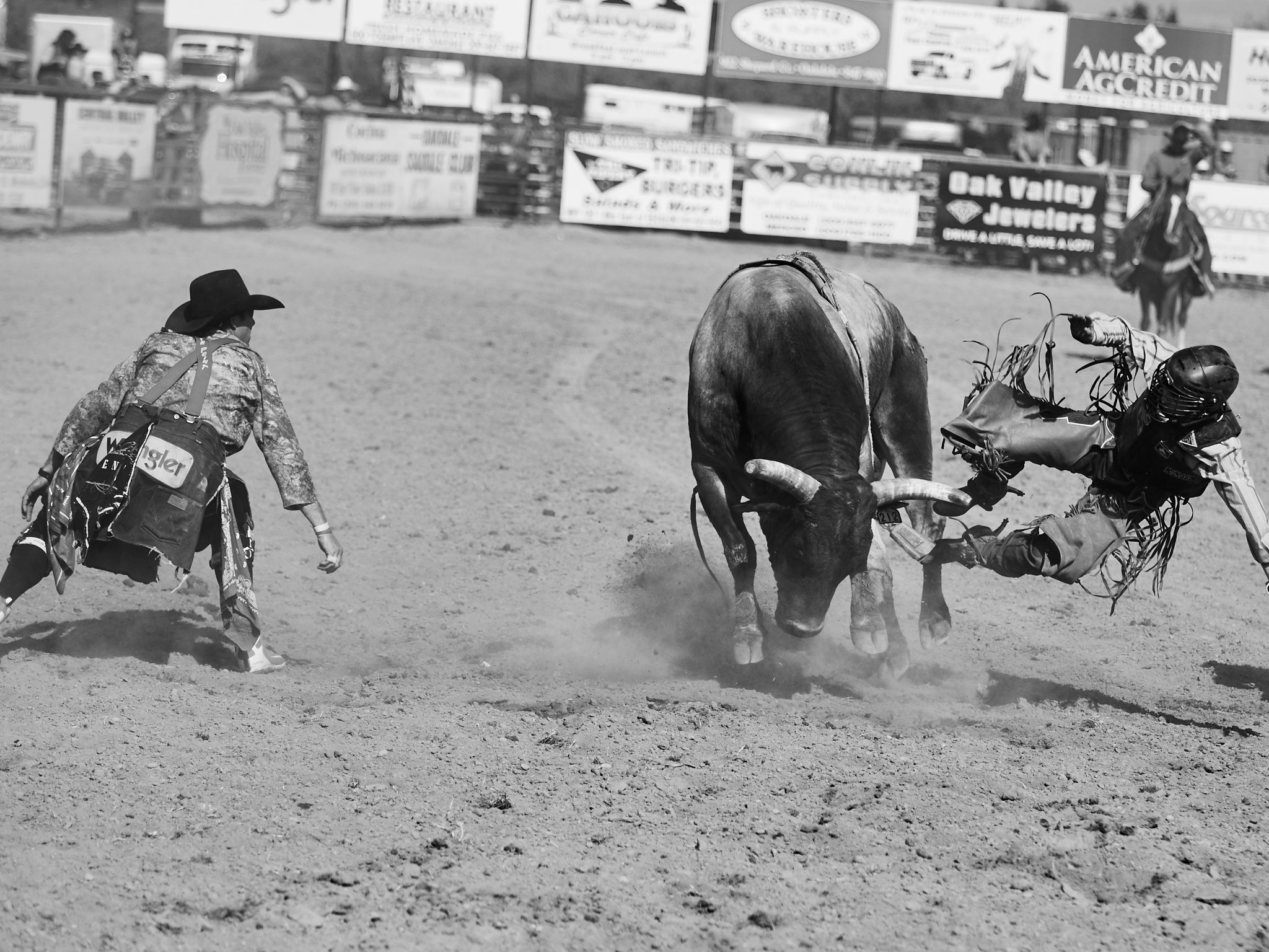 Rodeo_2019_1258.jpg
