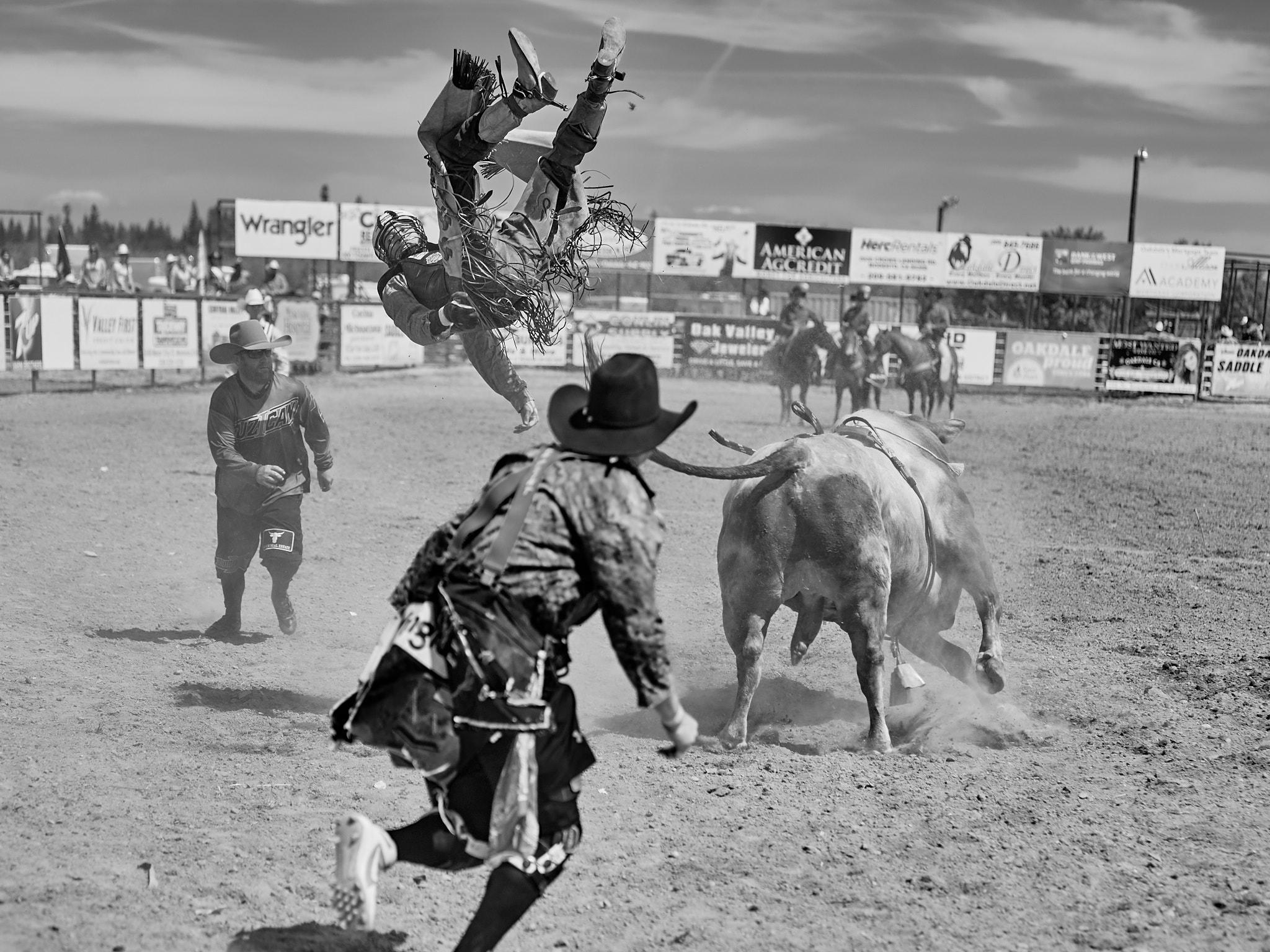 Rodeo_2019_379.jpg