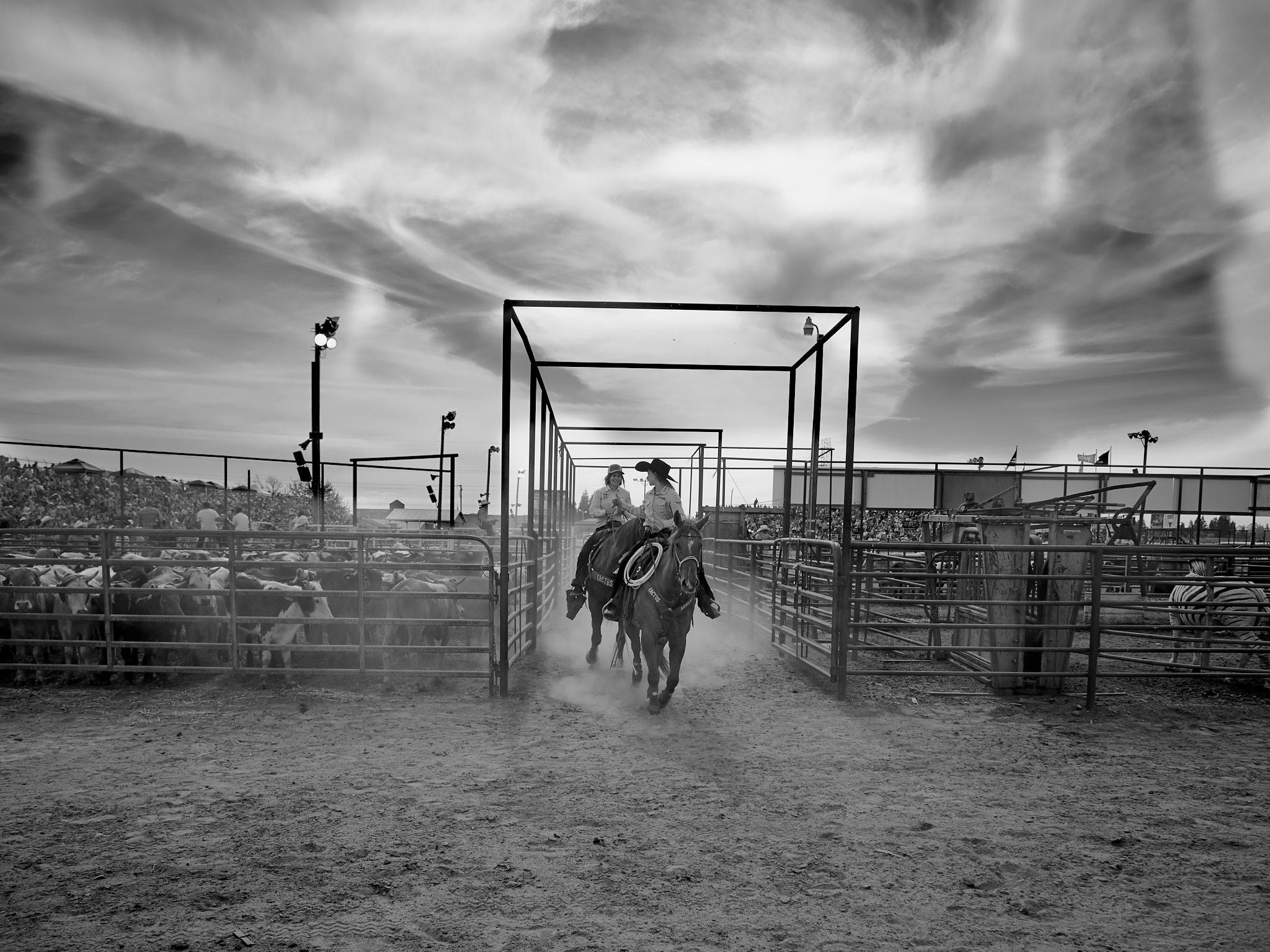Rodeo_2019_971.jpg