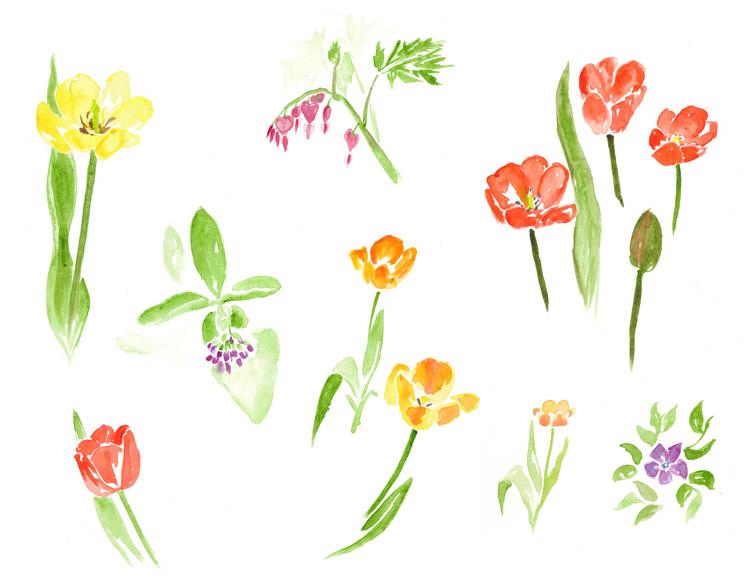 drawingsarah.com_flowers1.jpg