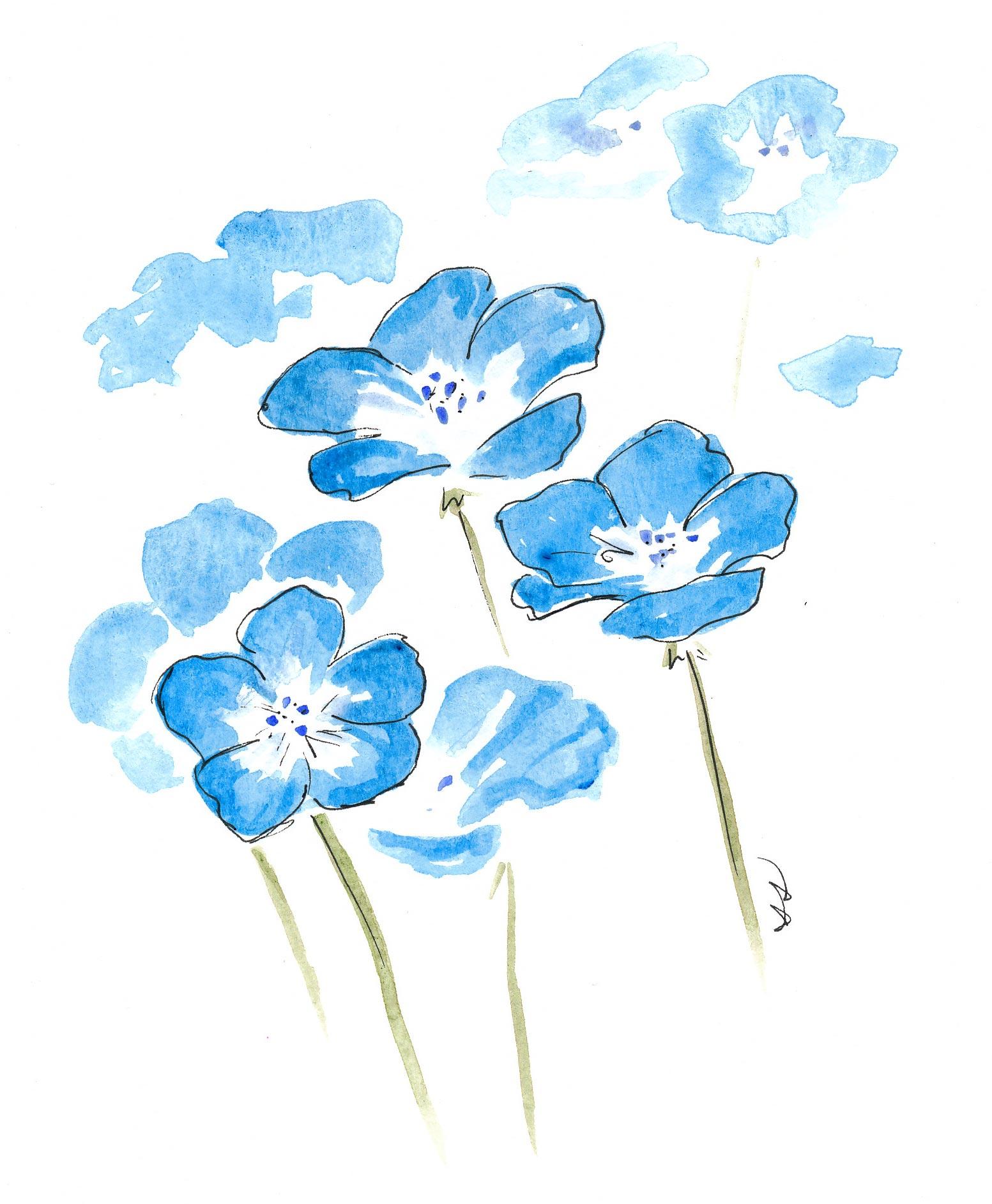 drawingsarah.com_blueflower.jpg