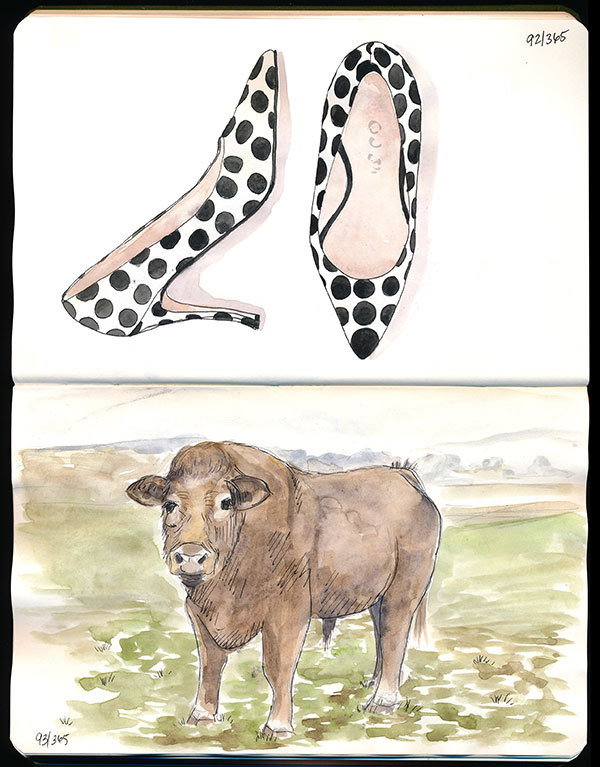 92/365 and 93/365 – Polka dot shoes and a bull. Yep, I'm all over the place!.