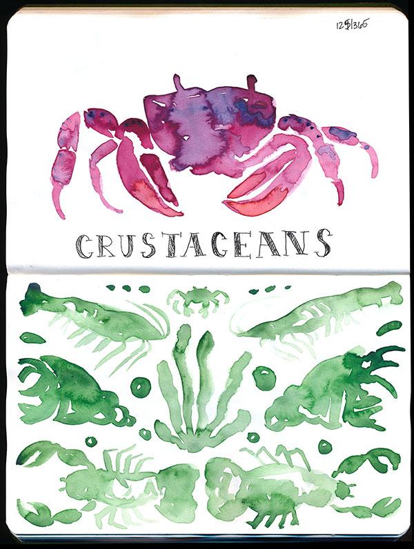 Crustacean pattern!