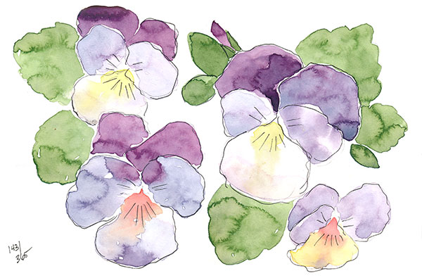 drawingsarah.com | 143/365
