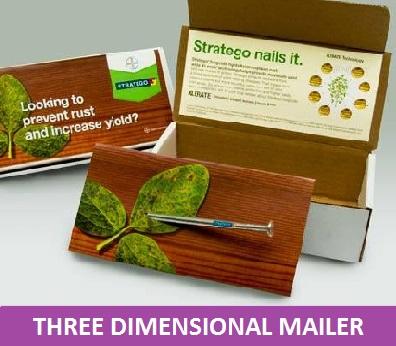 3 dimensional mailer 1.jpg