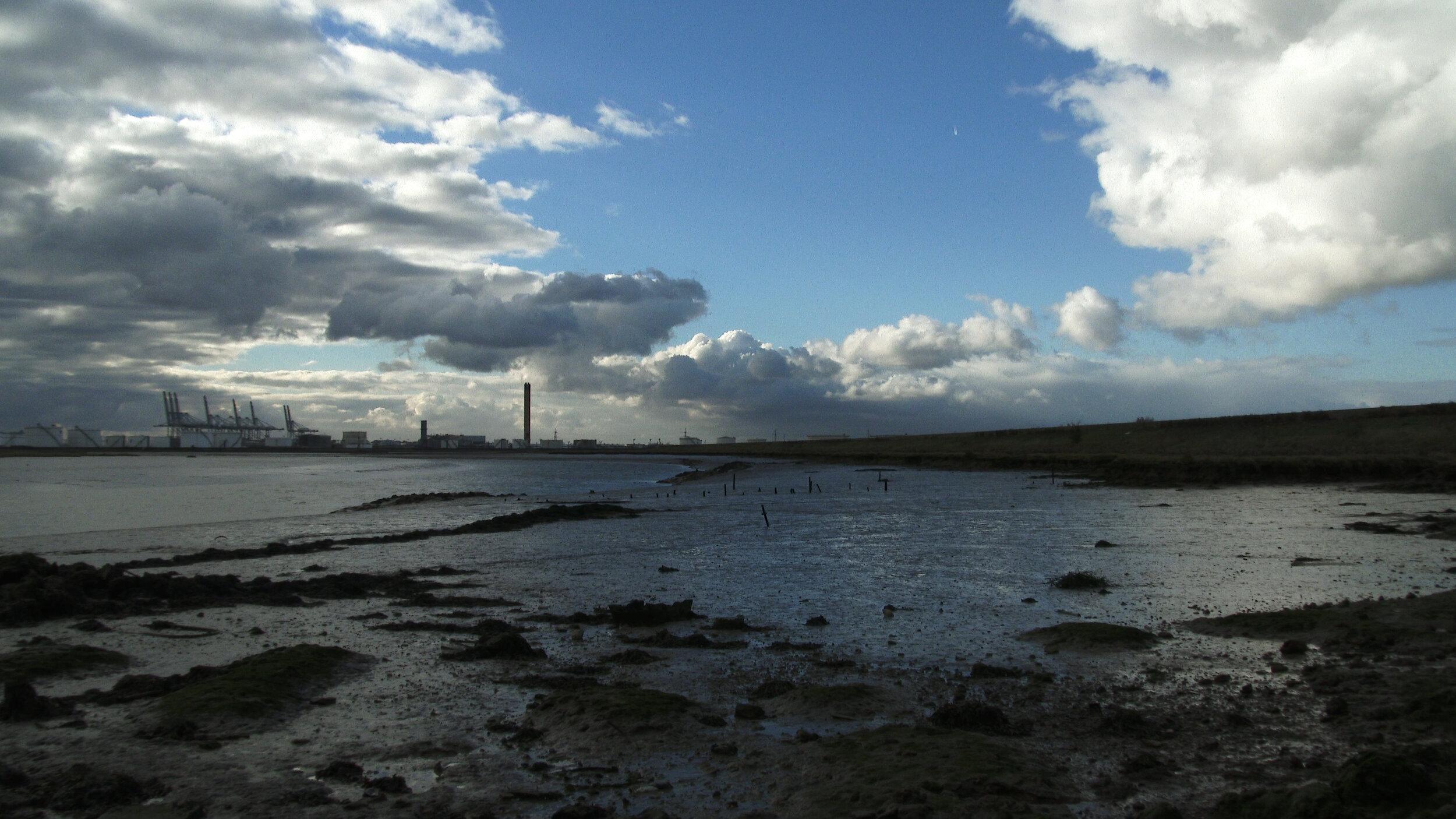 David+Blandy_The+World+After_2019_wetlands.jpg