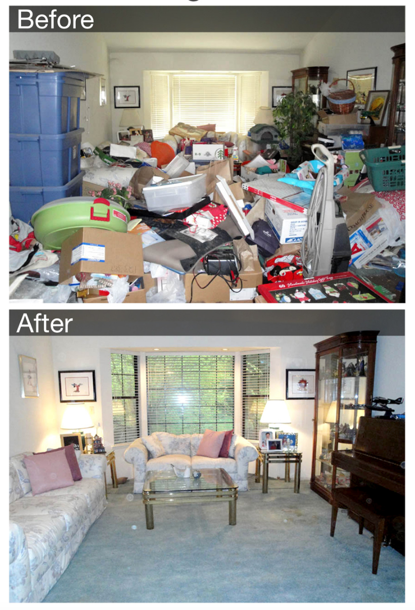 Living Room Collage.png