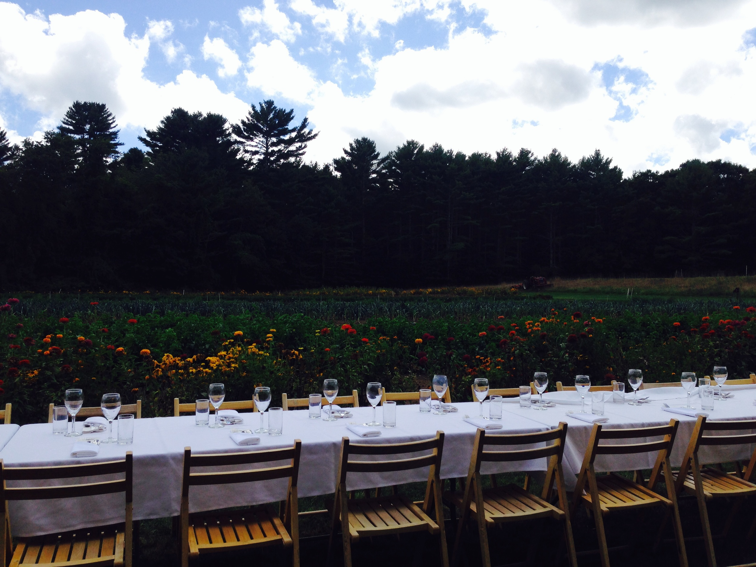 A table amongst the flowers at Arcadian Fields -Hope Valley, Rhode Island