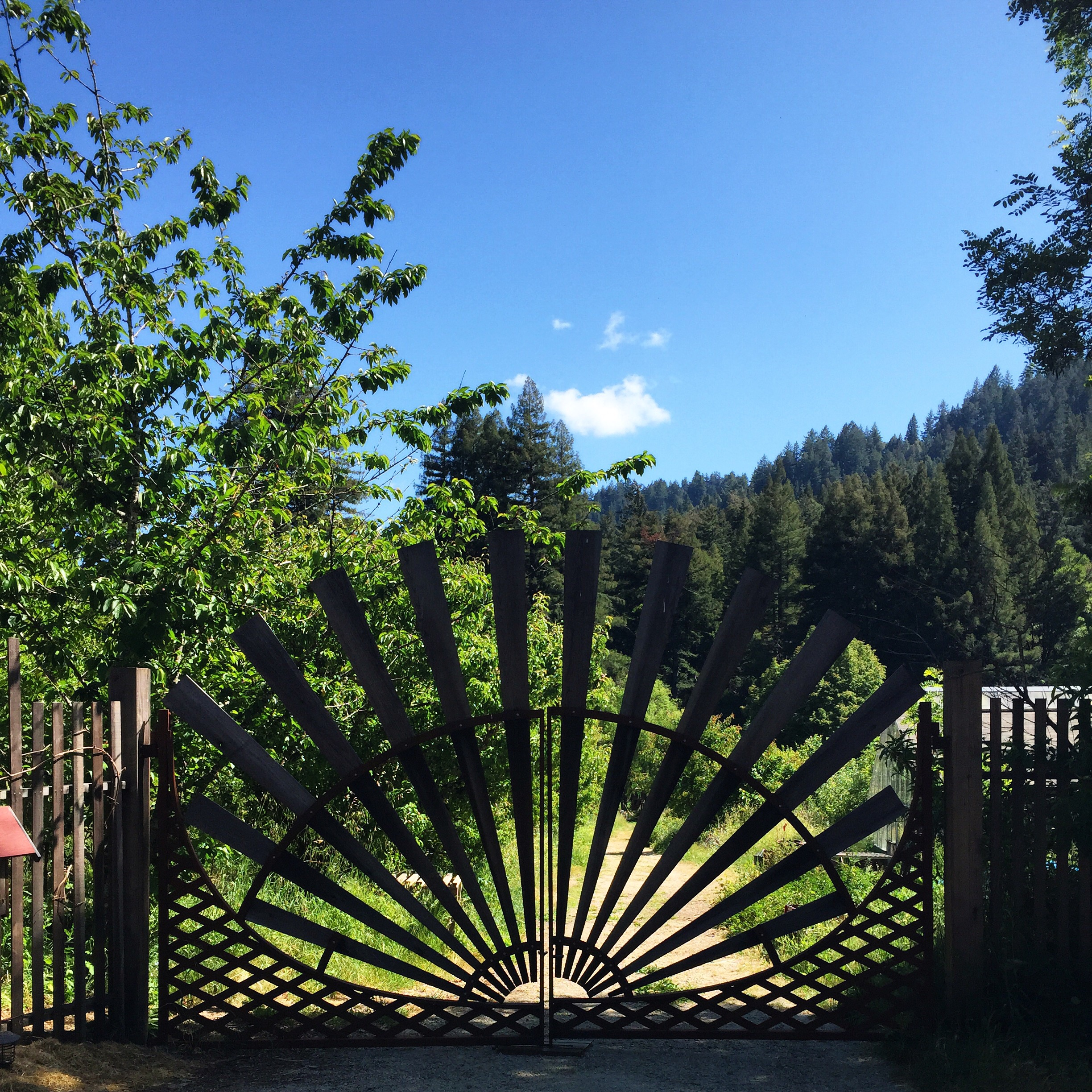 Front Gate at Camp Joy Gardens in Boulder Creek California