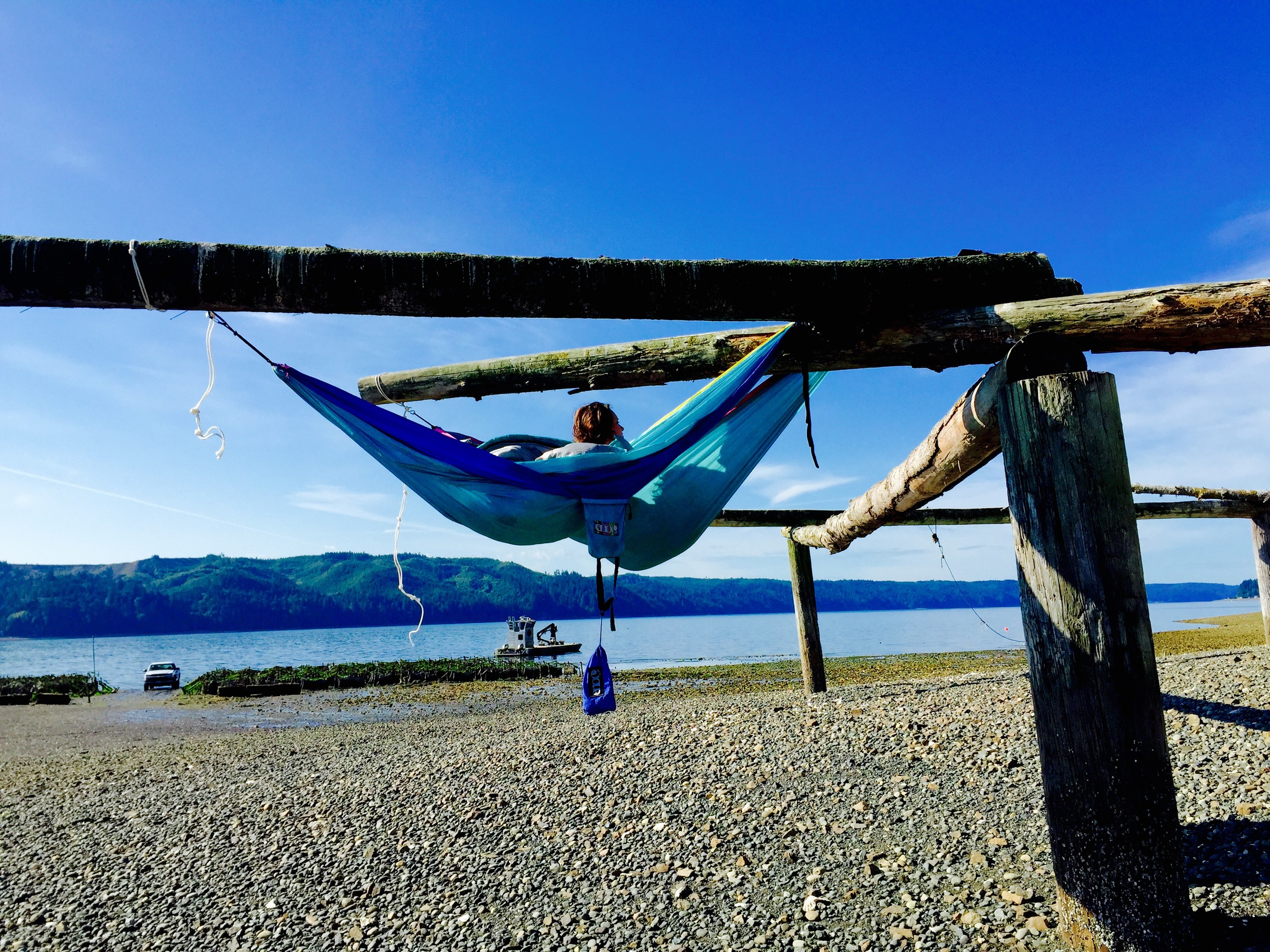 Hammocking in the oyster fields at Hama Hama Oysters in Lilliwaup, Washington