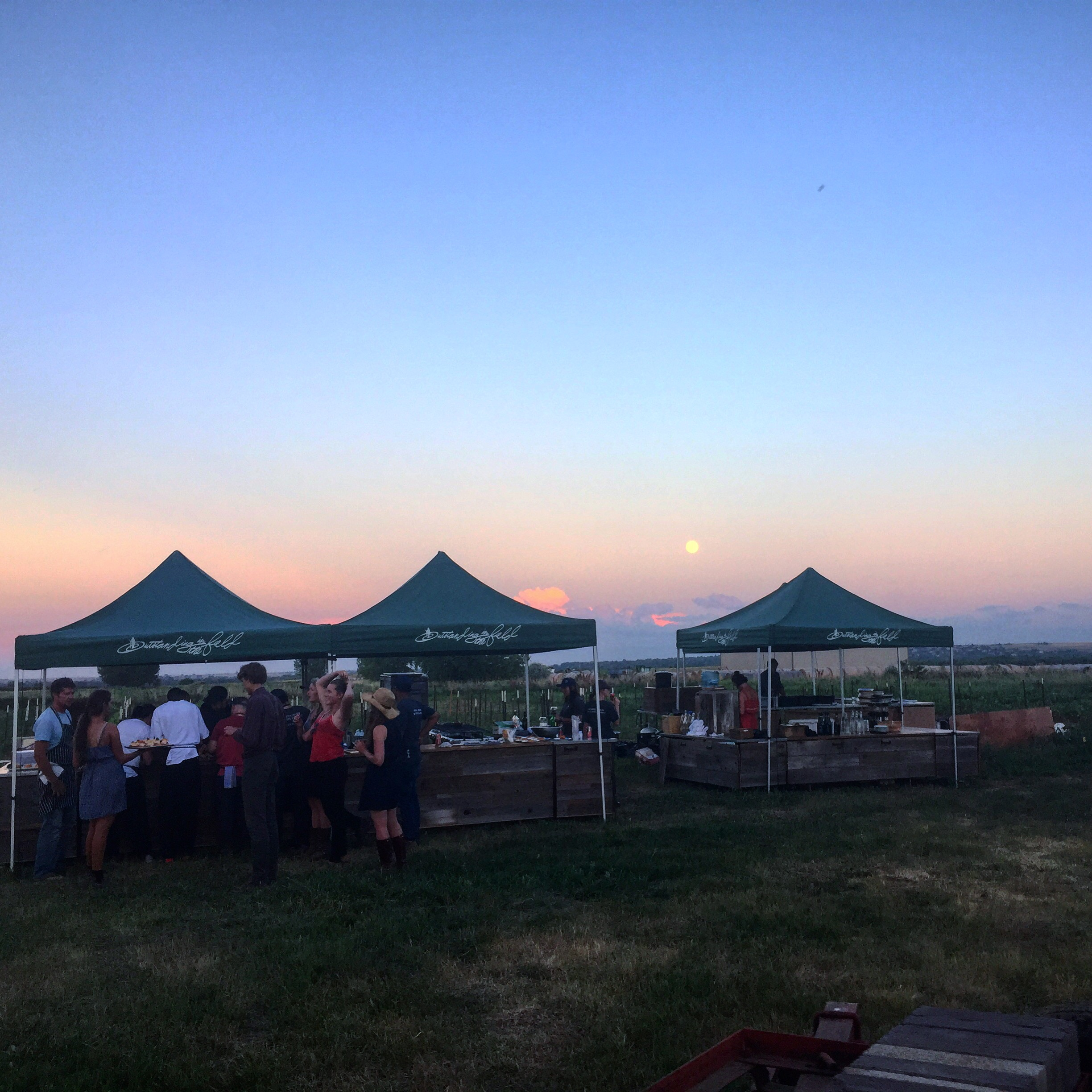 Moon + Mountains at Plowshares Community Farm//Longmont, Colorado