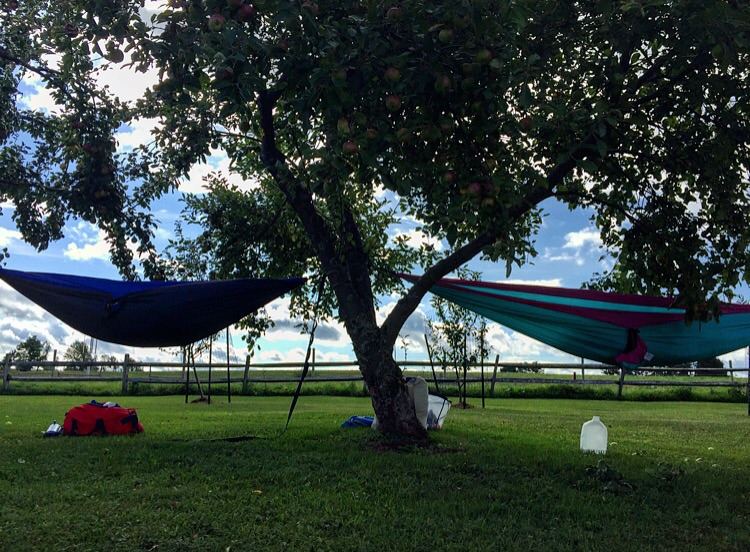 Hammock Life //Sharon Springs, New York