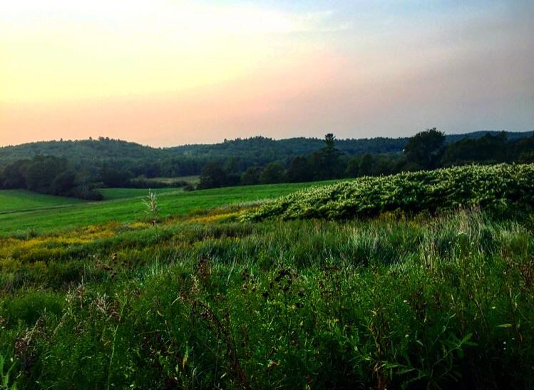 Sunset //Alna, Maine
