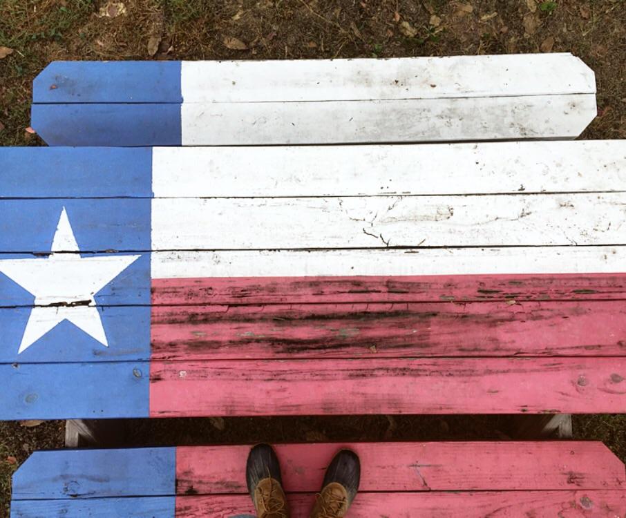 Texas Picnic// Austin, Texas
