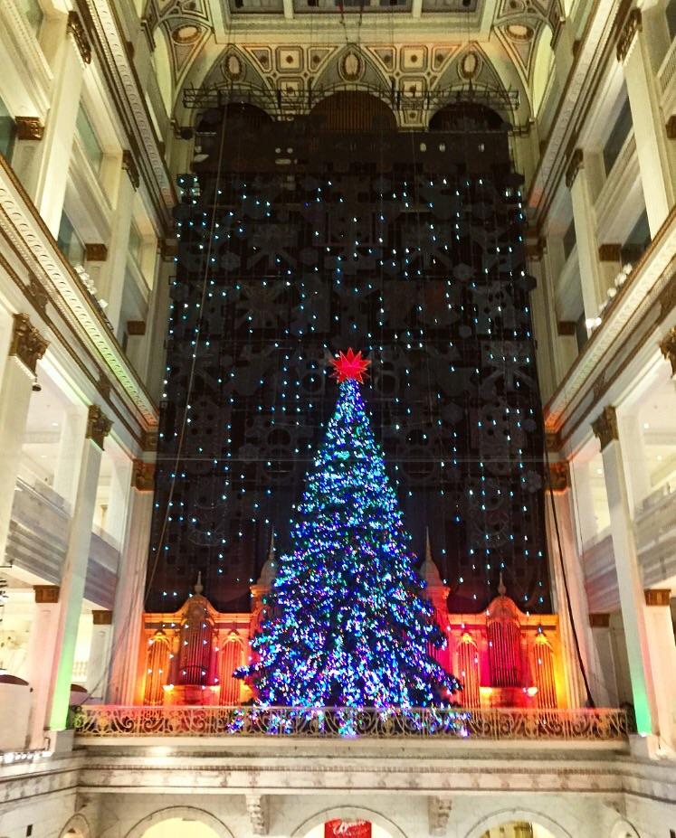 Christmas Time// Philadephia,Pennsylvania