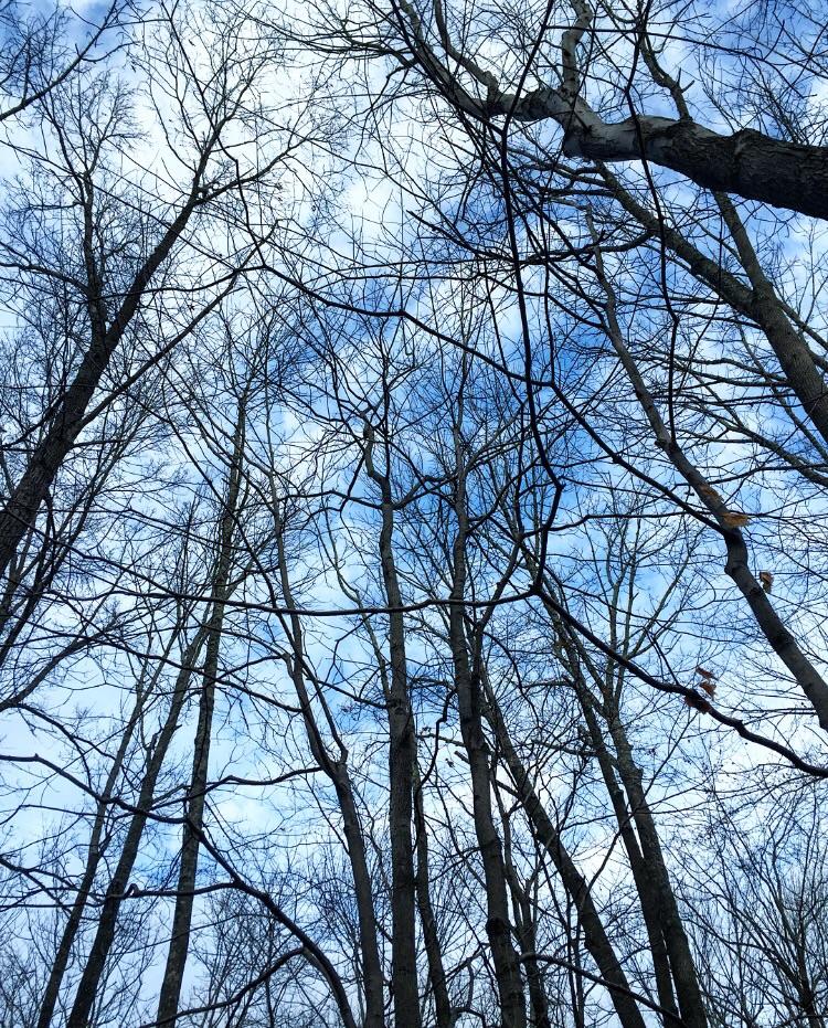 Skytime// Pipersville, Pennsylvania