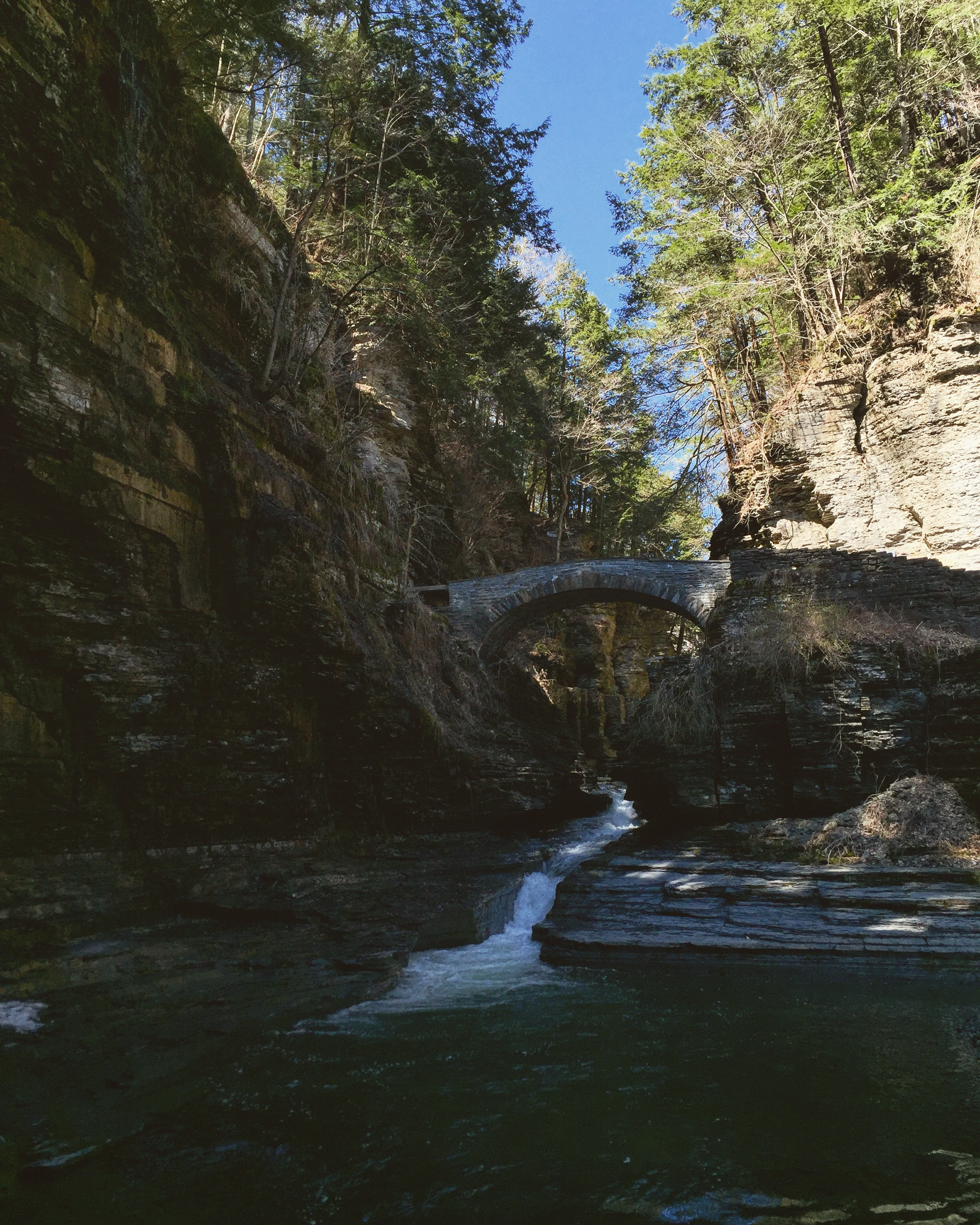Robert H. Treman State Park// Ithaca, New York