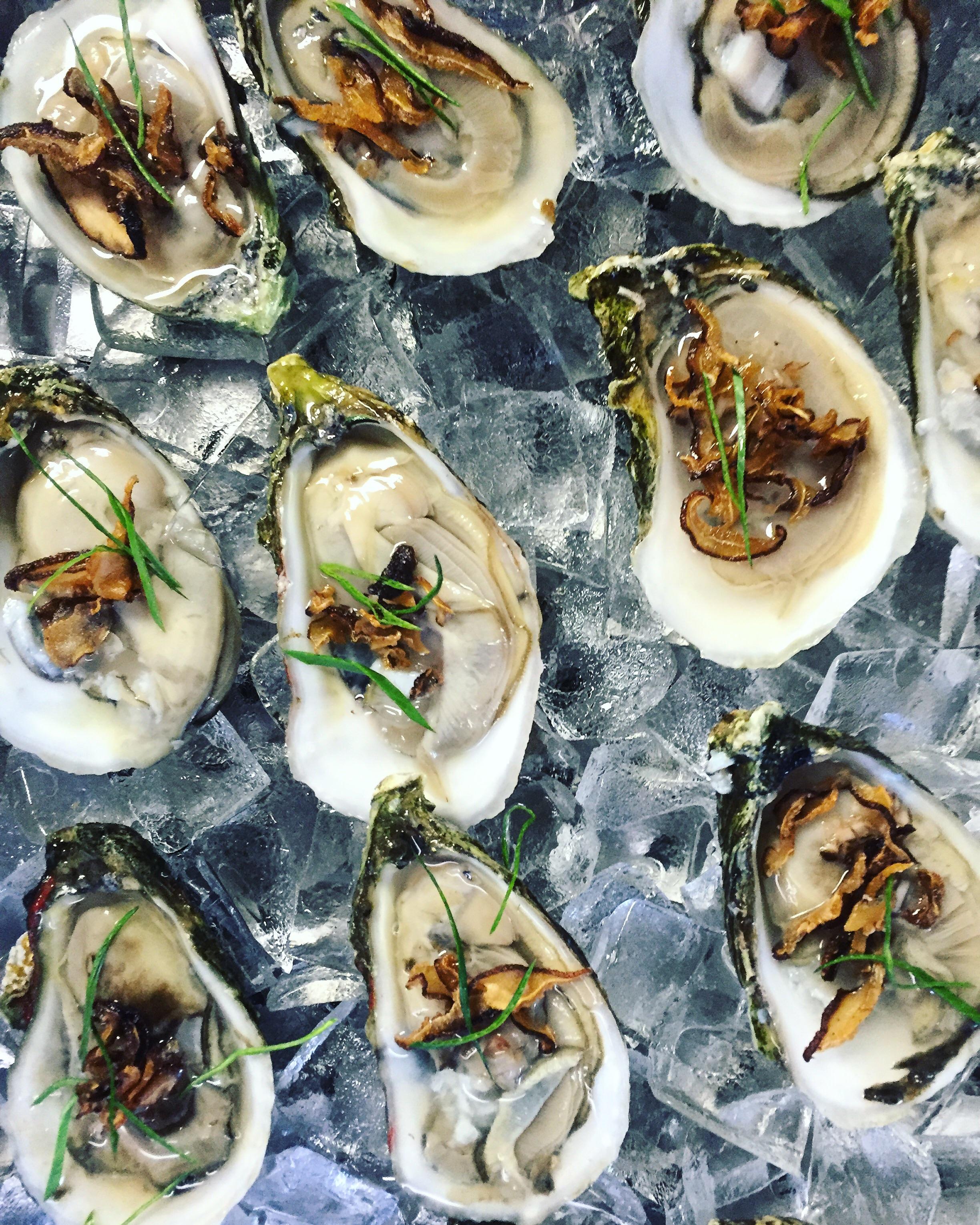 Shiitake Oysters at Bolete//Bethlehem, PA