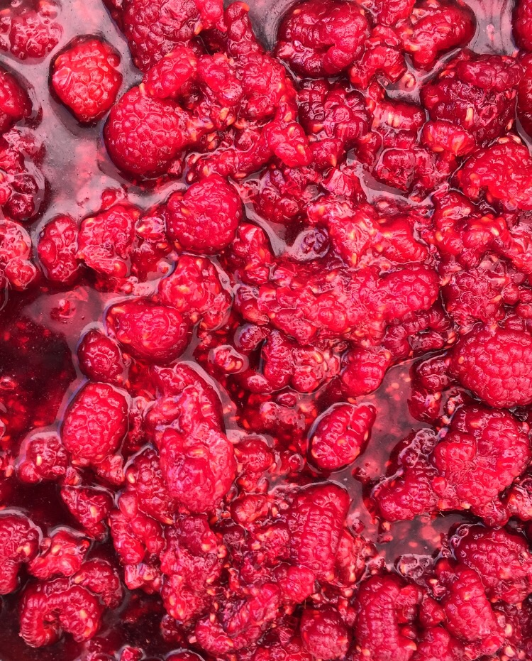 Raspberry Goodness// Belgrade Lakes, Maine