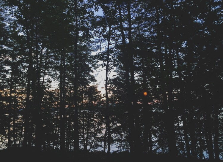 Lakeview// Belgrade Lakes, Maine