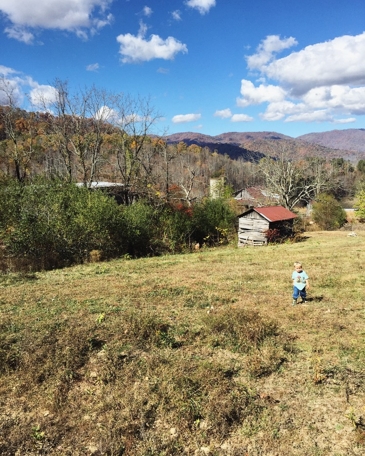Little Man on his Big Farm// Sandy Mush, North Carolina