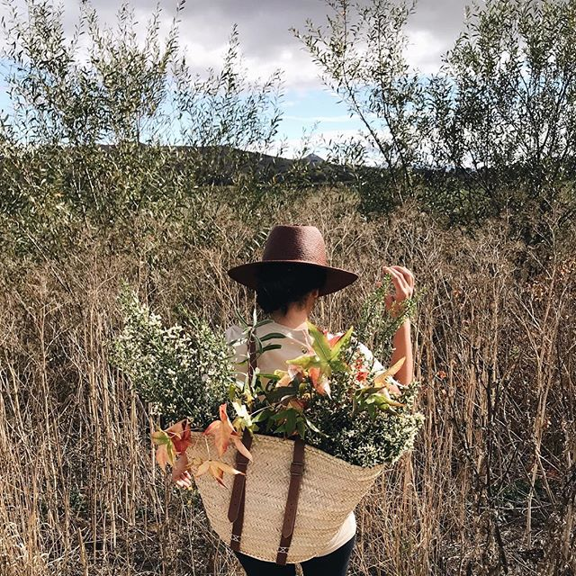 Currently making tea and looking through all of our road trip photos from last week. I don't think I can put into words how much I love Fall. 🌾🍂🌻#veronicawanders #seasonslikethese #veronicavalenciahome