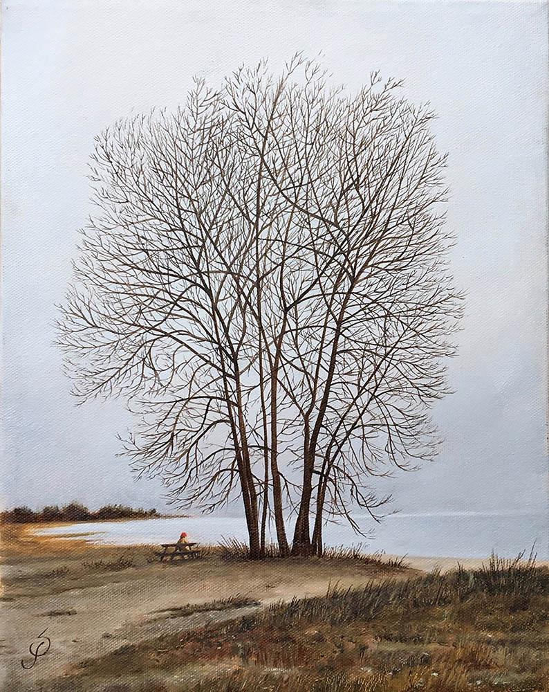Steven Parton Title: Sherwood Island Size: 14 x 11 Price: $950