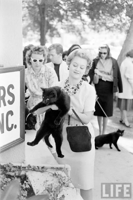 Black Cat Auditions In Hollywood, 1961 (12).jpg