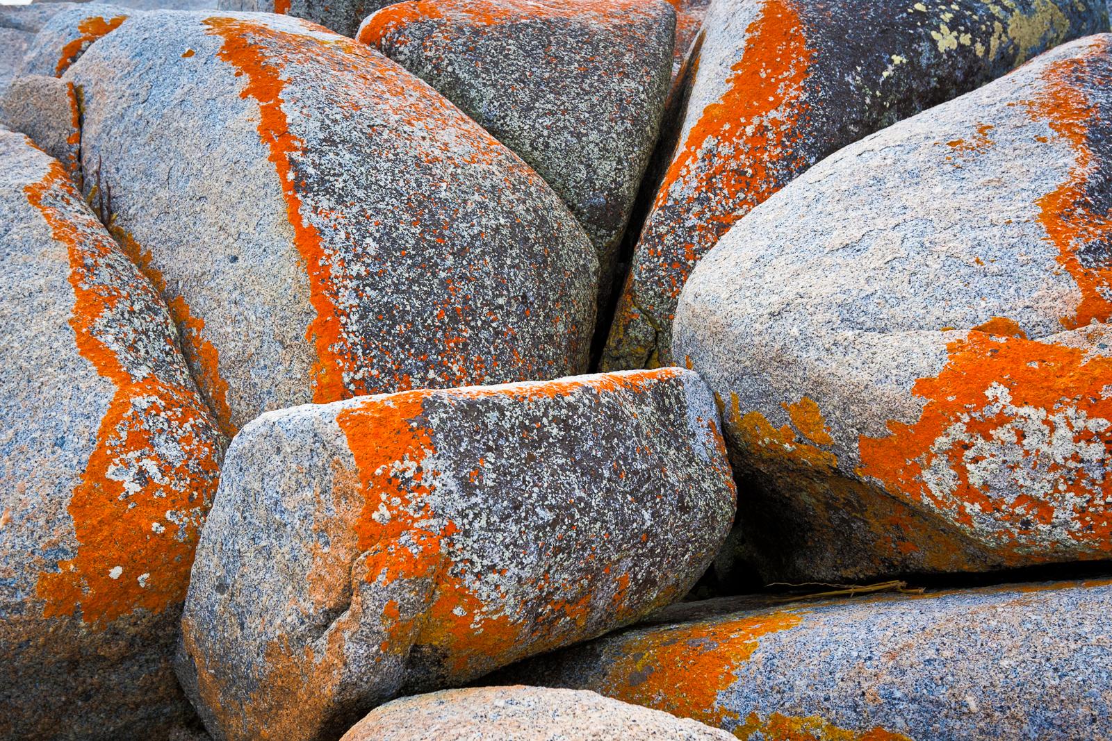 Boulders at Bay of Fires, Tasmania