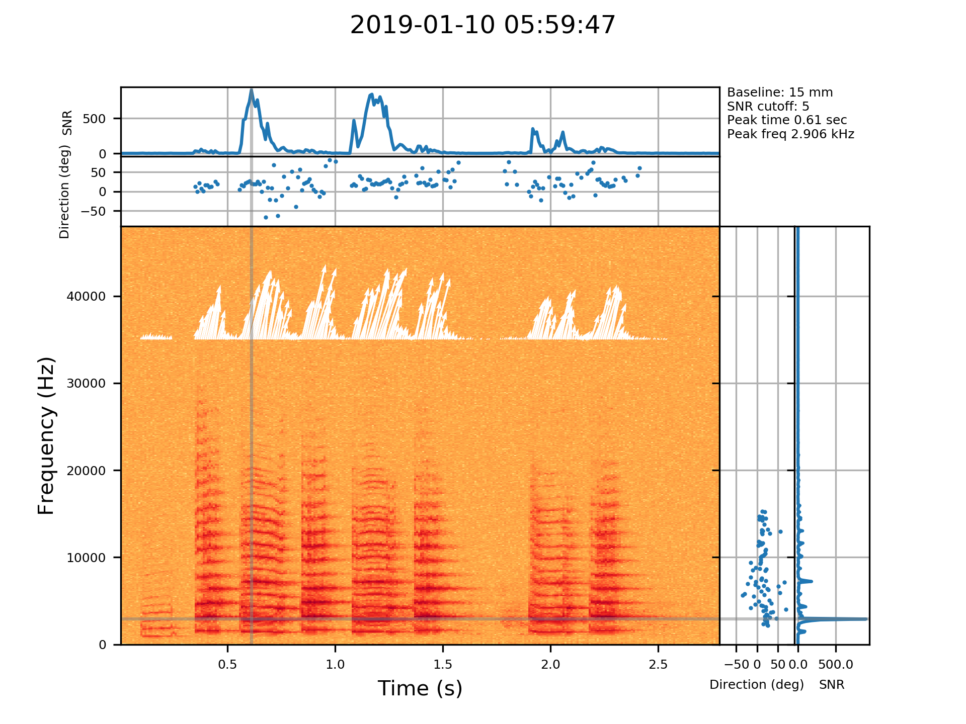 A  little wattlebird  ( Anthochaera chrysoptera ), observed on 10 Jan 2019. The main panel shows the spectrogram and the white vectors are the measurements of direction to the signal (vector length is related to signal strength). The top two panels show signal strength (measured in signal-to-noise ratio) and direction as a function of time for the frequency of the loudest signal (2.9 kHz, indicated by the horizontal line). The two right panels show SNR and direction as a function of frequency (indicated by the vertical line) at the time of the peak.
