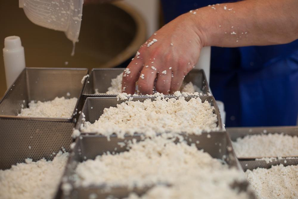 Här försöker man att göra ostarna så jämna som möjligt.