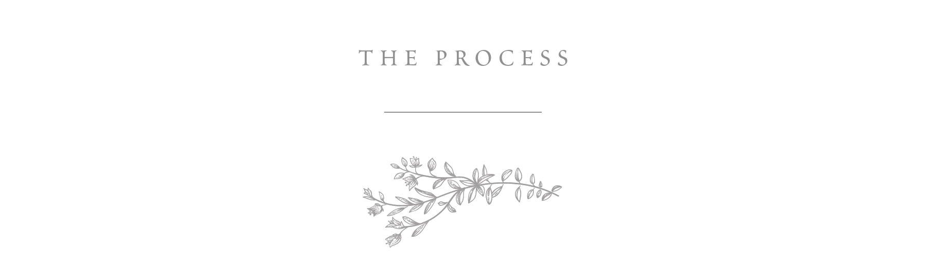 The Process.png