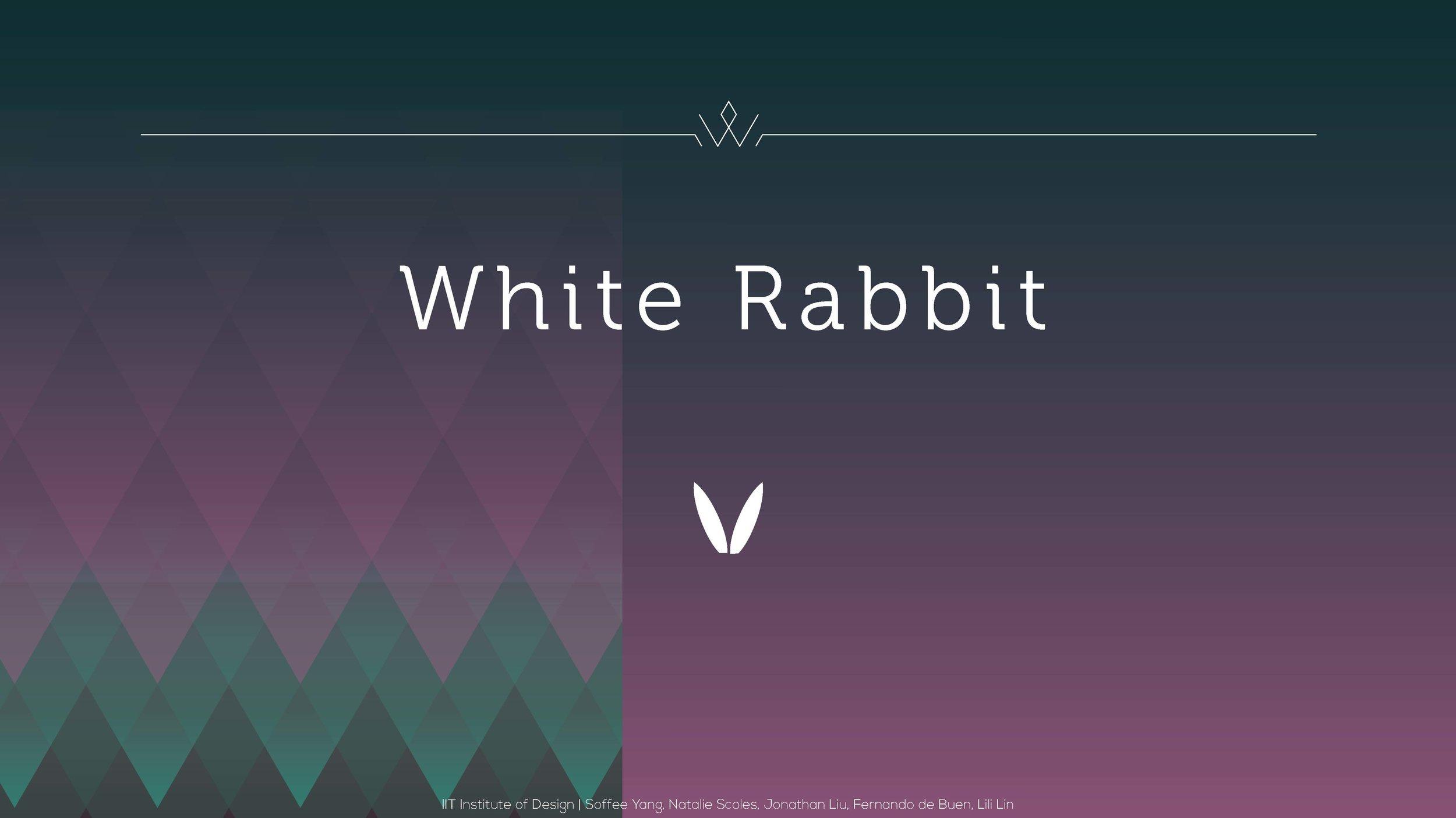 white rabbit_Page_01.jpg