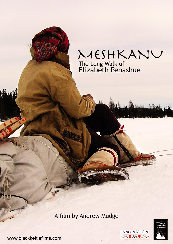 Meshkanu poster.jpg